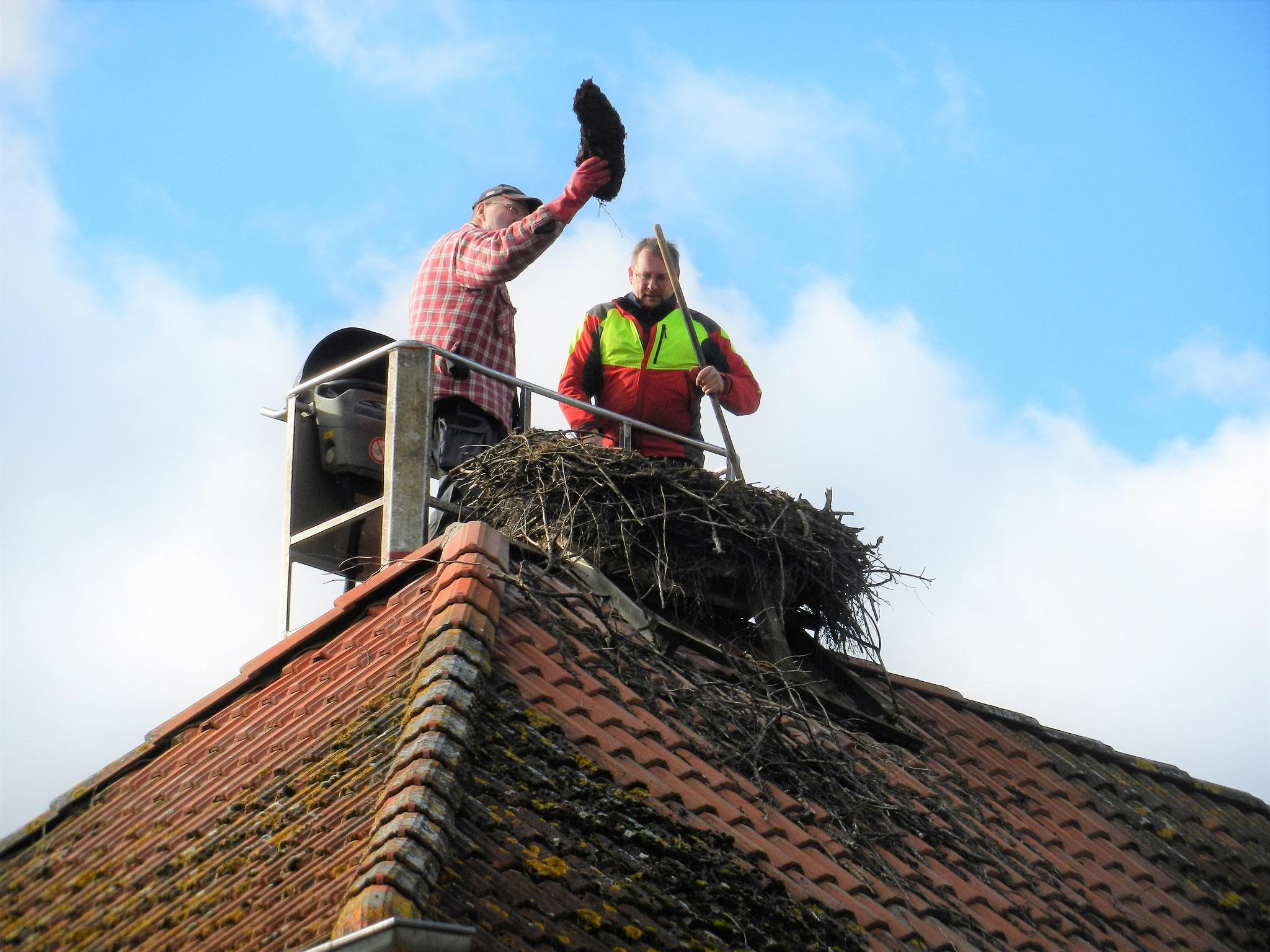Ein großer Brocken gefrorenes Nestmaterial fand sich noch im Nest auf der Feuerwehr