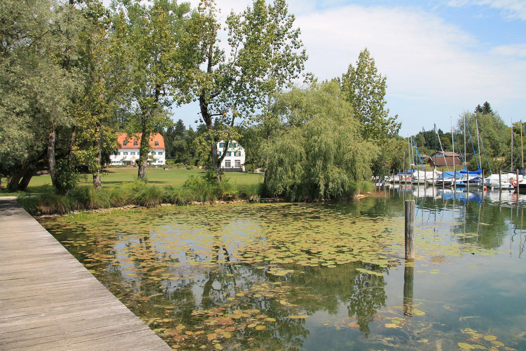 Steg und Ufer zum Anwesen
