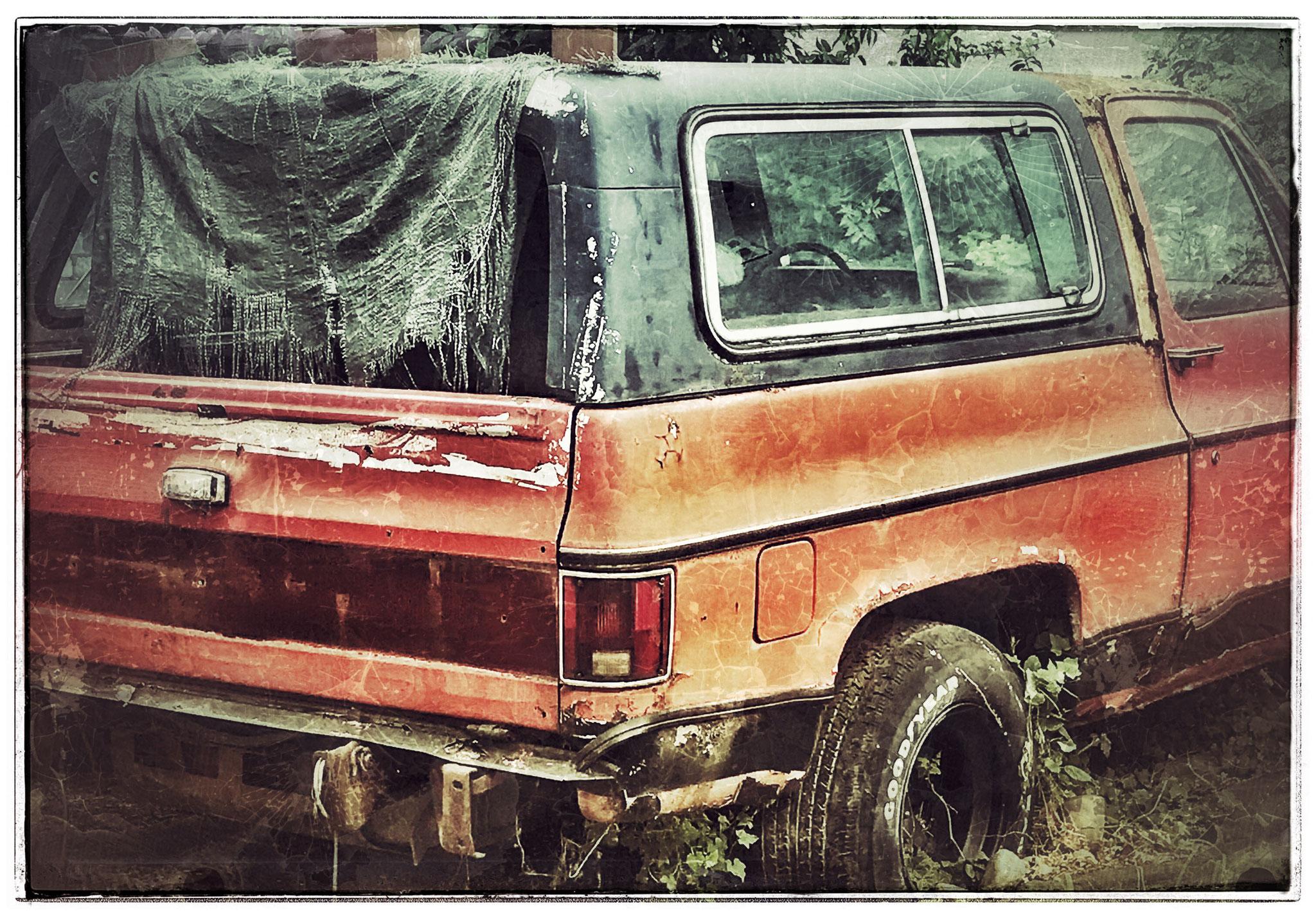 Ein Pick Up, den sich langsam die Natur holt. Shotloc: Ludwigshafen