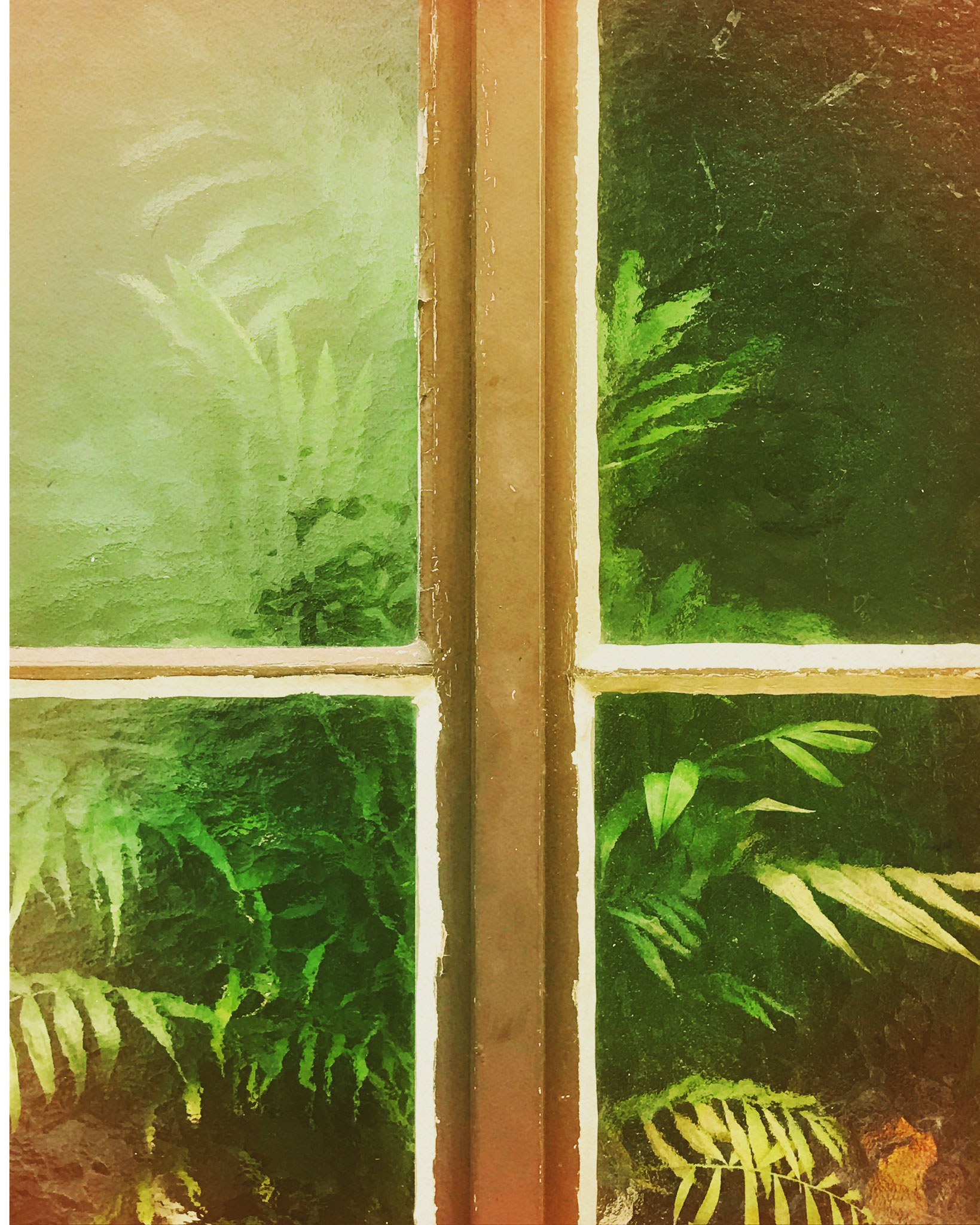 Urban Jungle behind a window