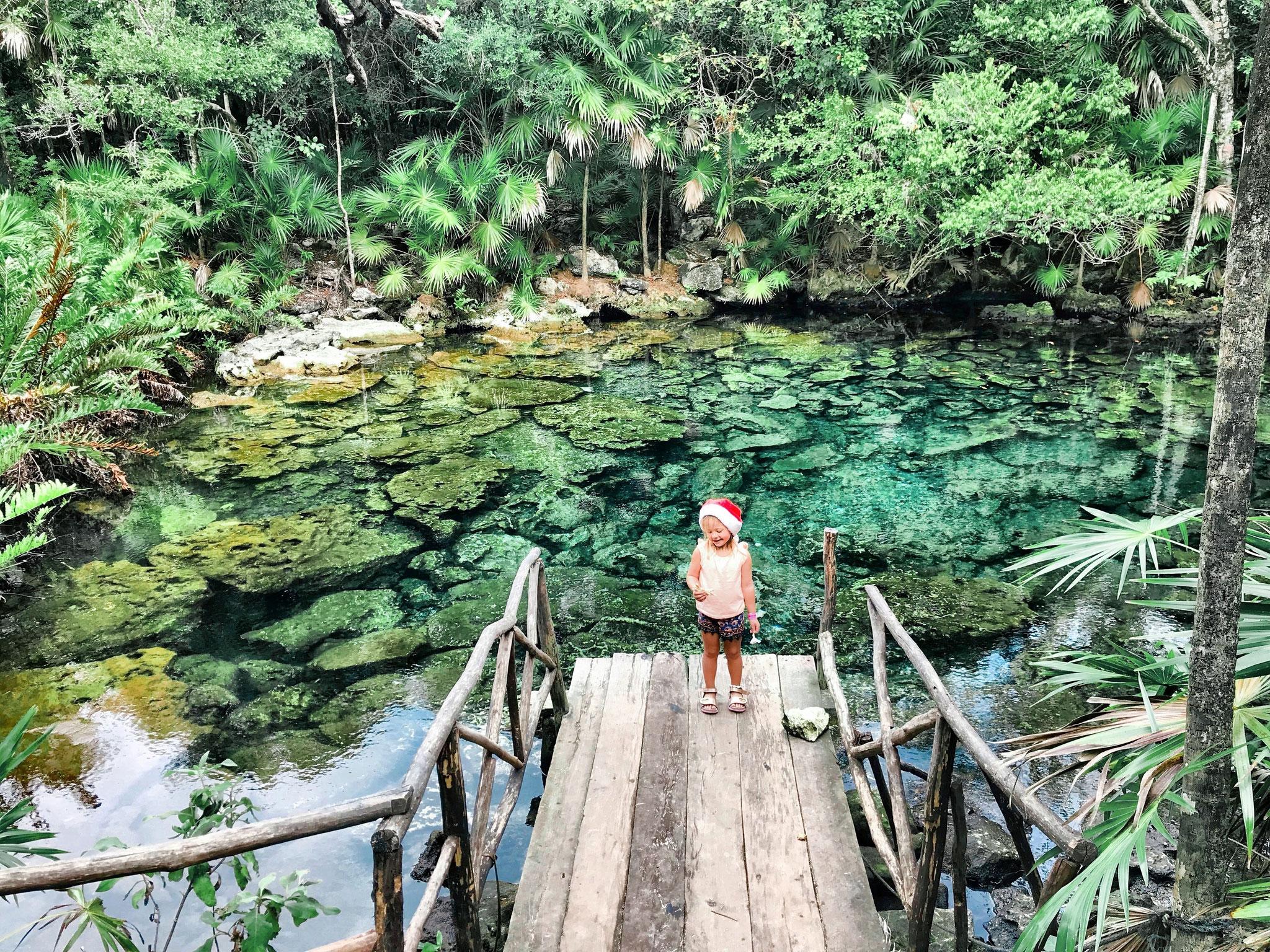 Die smaragdgrüne Cenote.