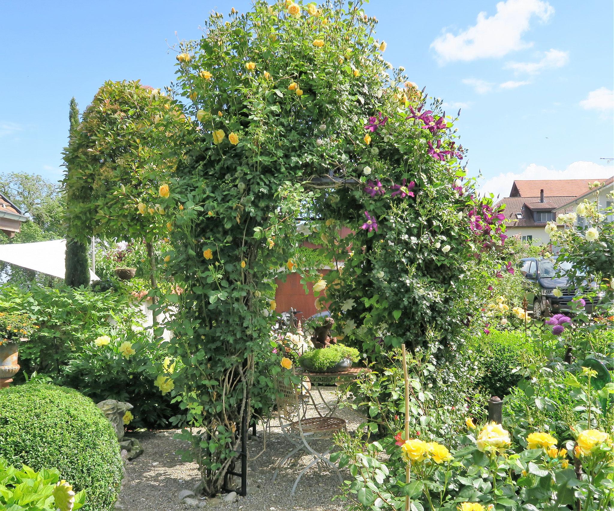 Empfangen werden wir von einem herrlichen gepflegten Rosengarten