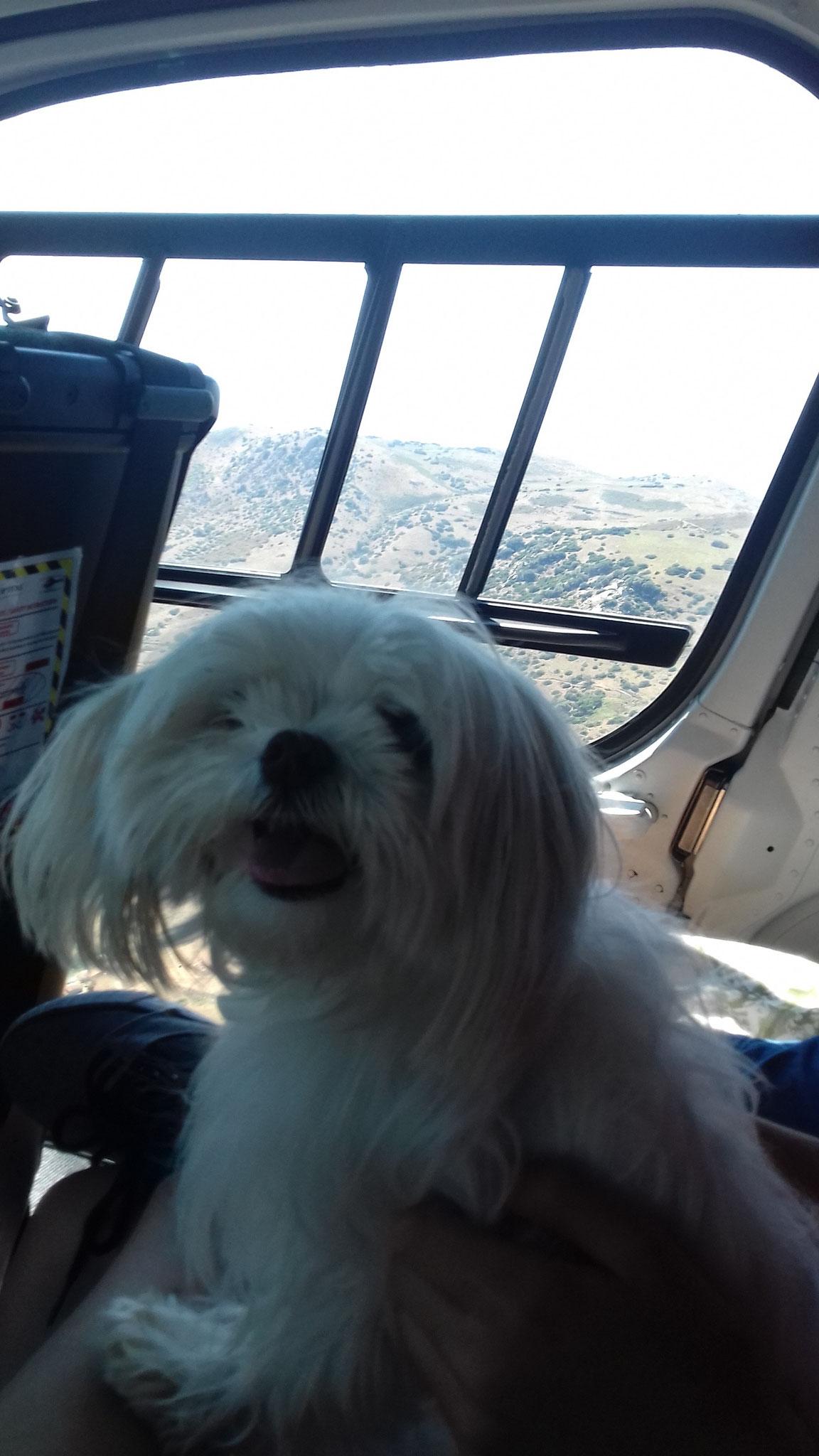 Linka en hélicoptère