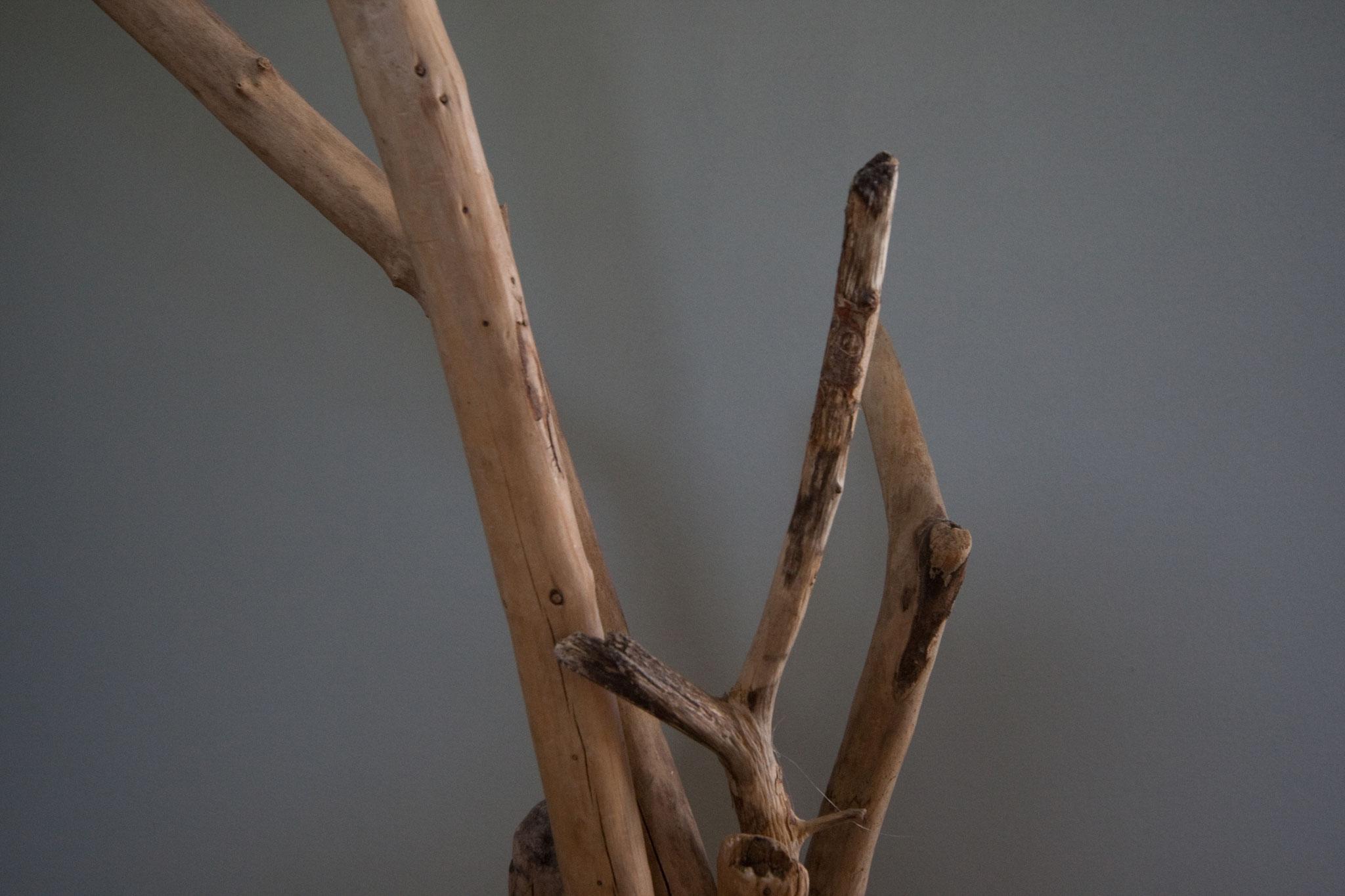 volvox Espressivo Lehmfarbe: 118 chinchilla