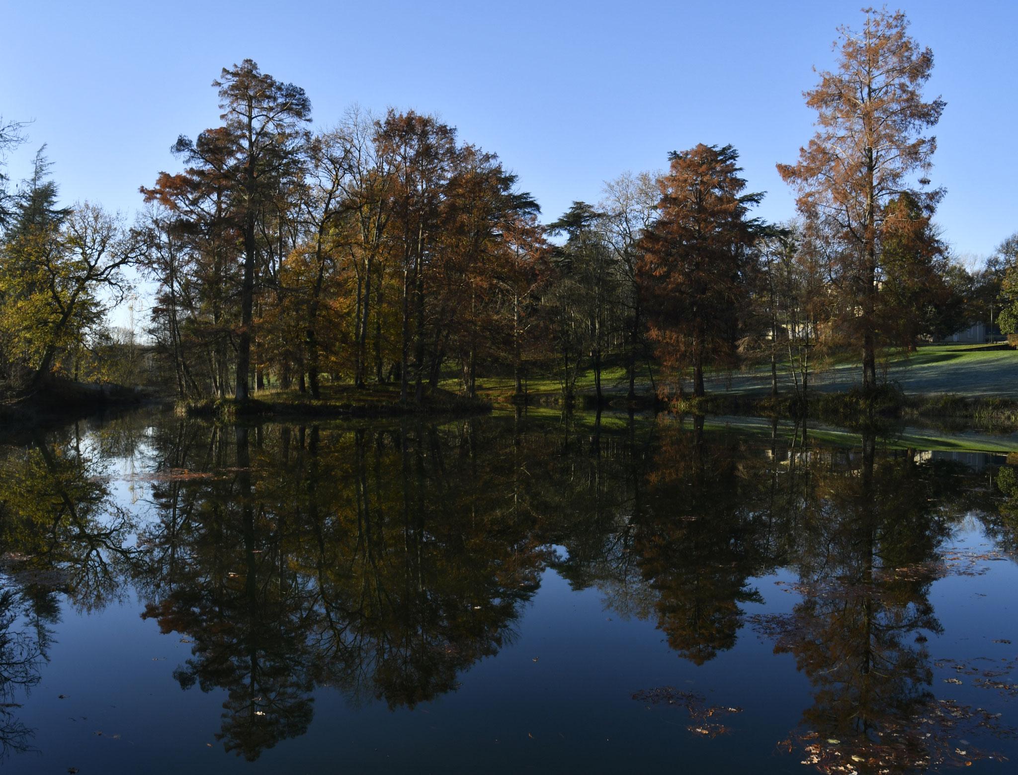 Le Parc de la Verrerie à Carmaux par Dominique Hénaff