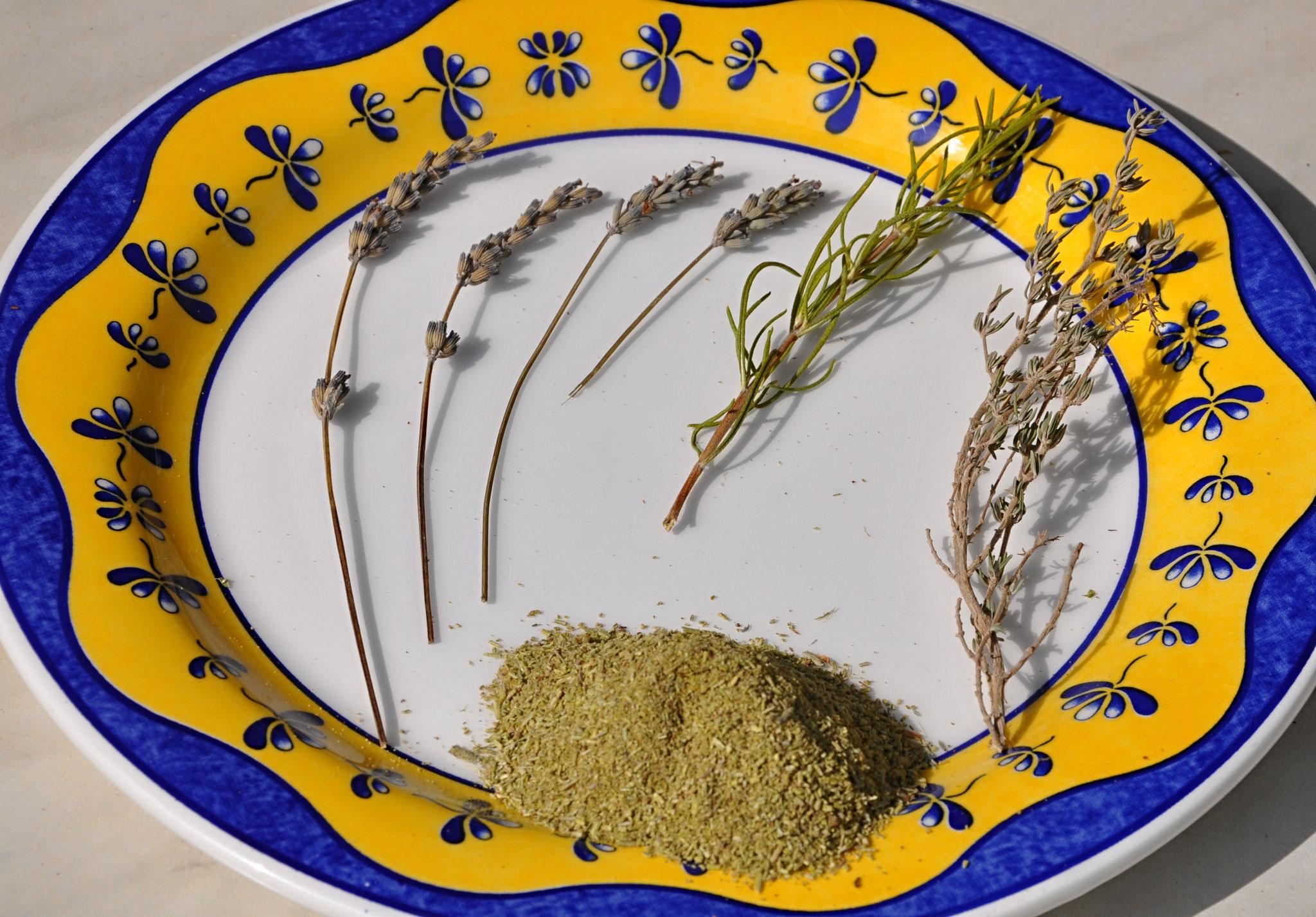 Les trois herbes aromatiques: lavande, romarin et thym.