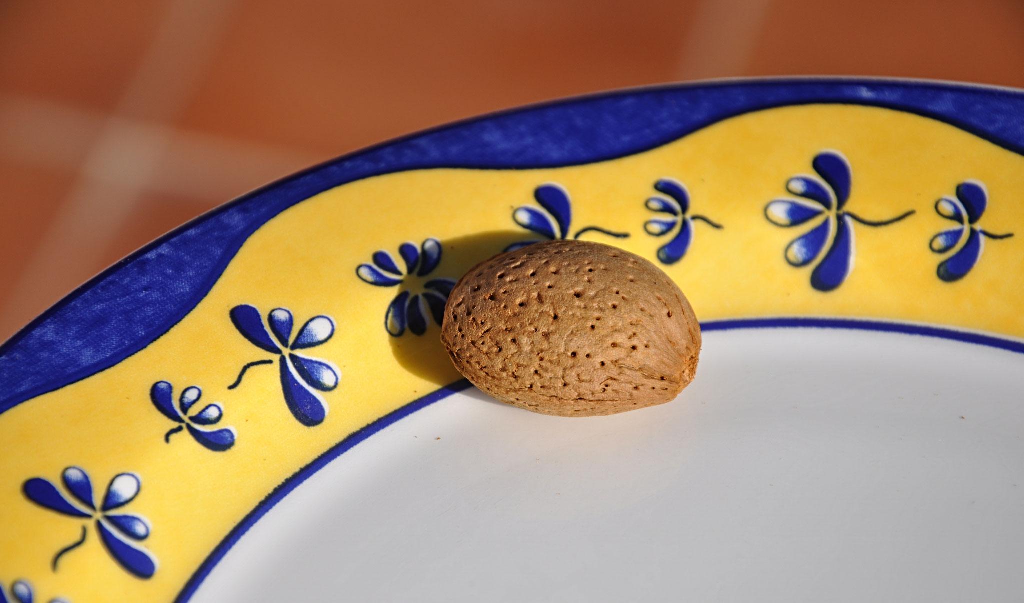 La coque de l'amande, avec ses orifices de ventilation, est un véritable chef d'oeuvre de Dame Nature.