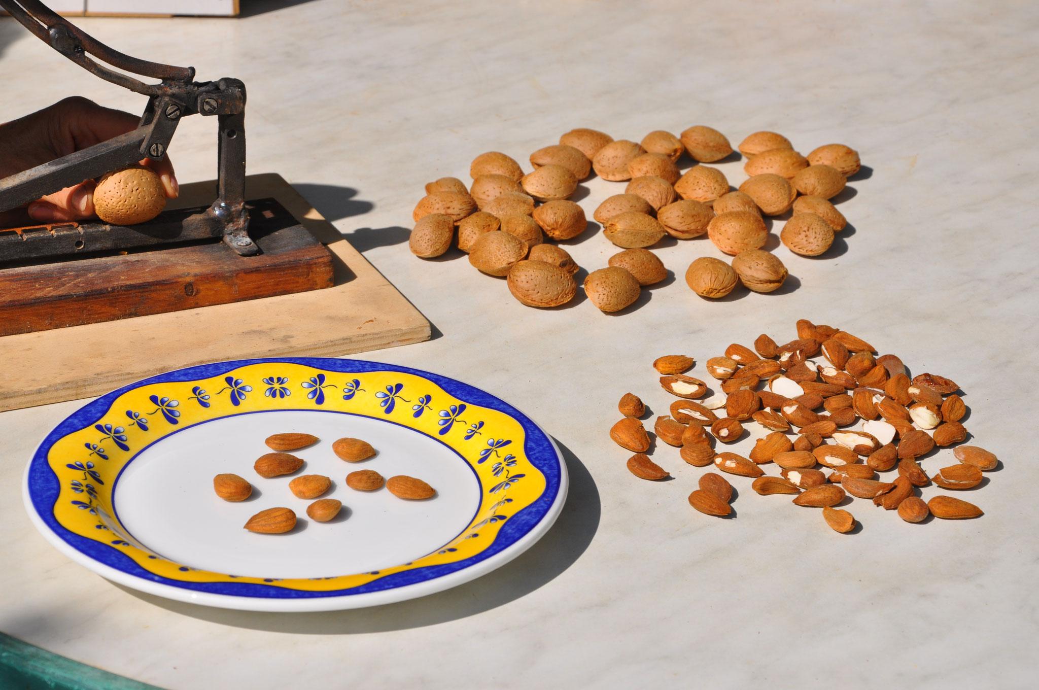 5º -  Exclusivité sur le marché de l'amande : sélection rigoureuse... une à une ! Vous ne dégustez que le gratin de chaque millésime.