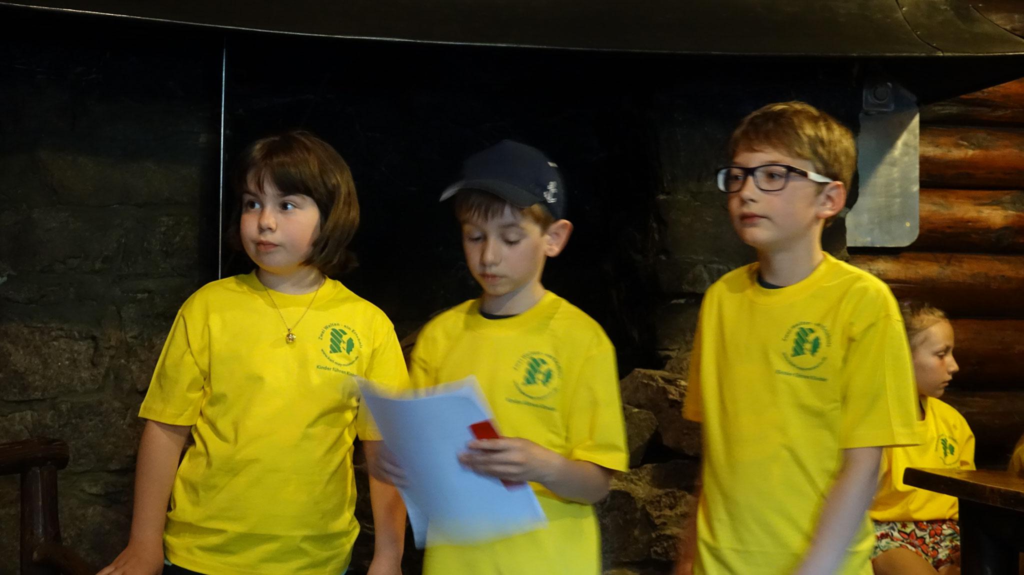 Die 3 Expert*innen für den Kaminraum