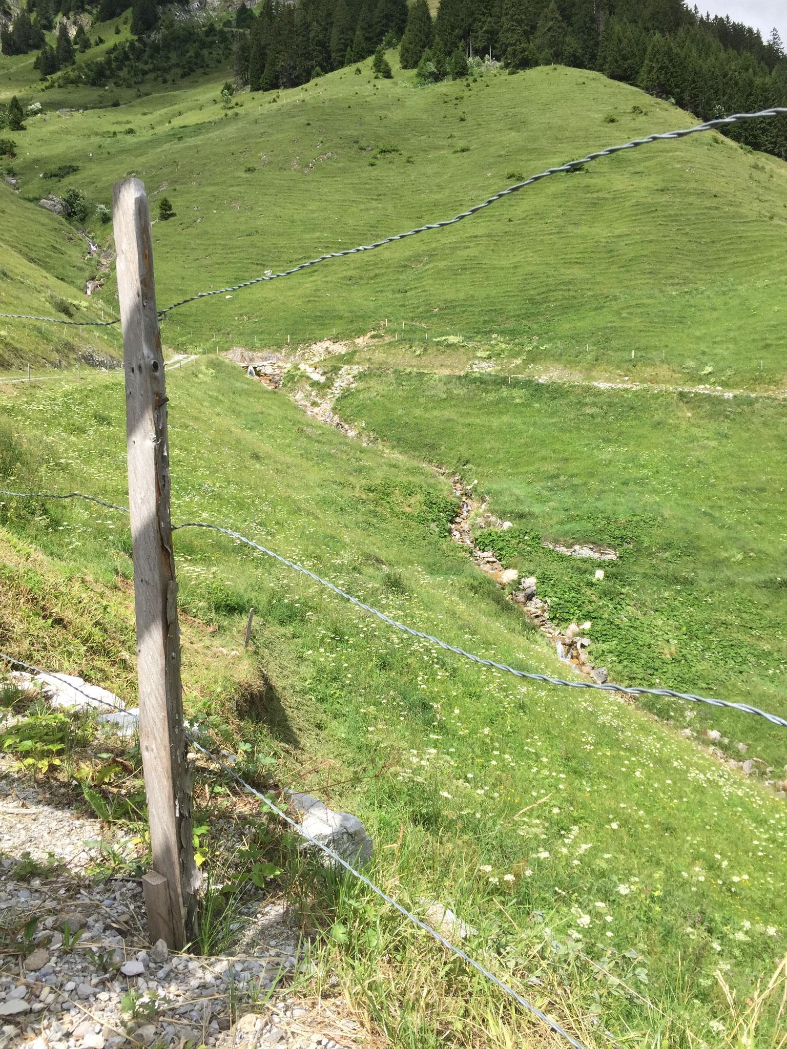 Bergbach im Osten