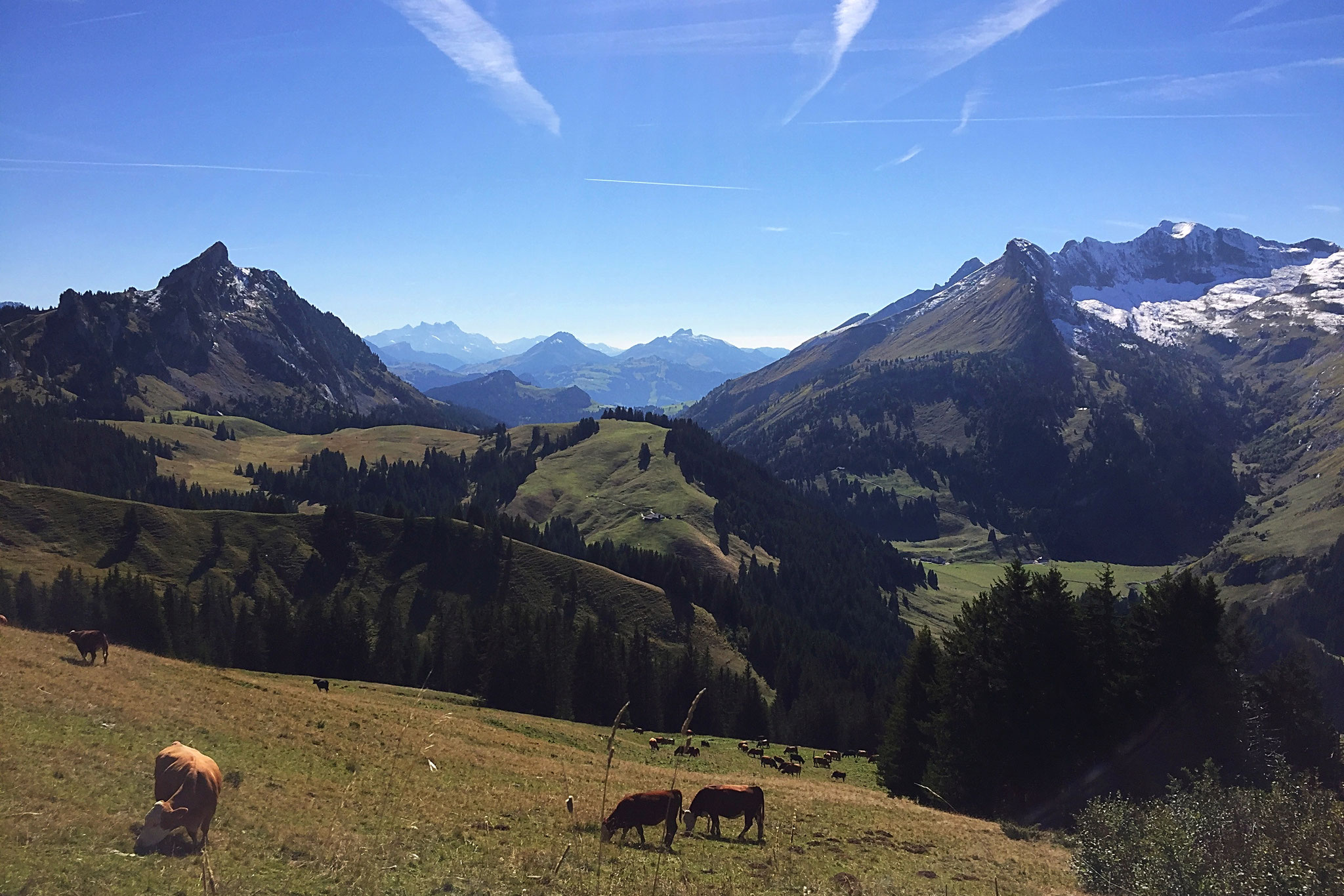 Alp Pralet