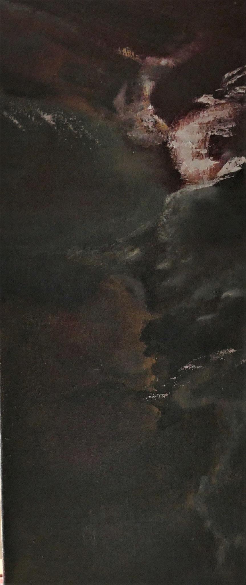 N° 16 : 50 cm X 20 cm : huile sur toile