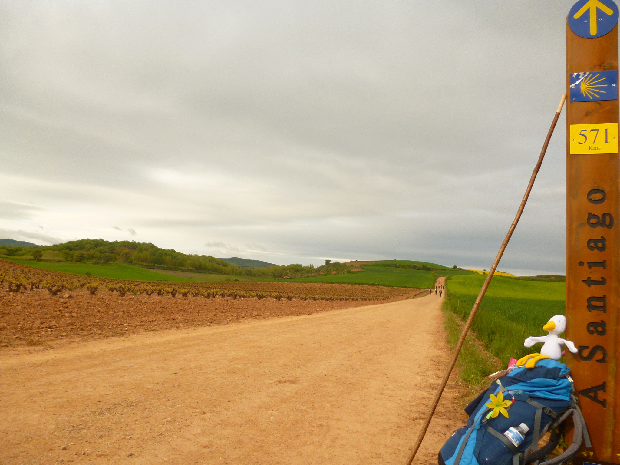 Cammino di Santiago 2013