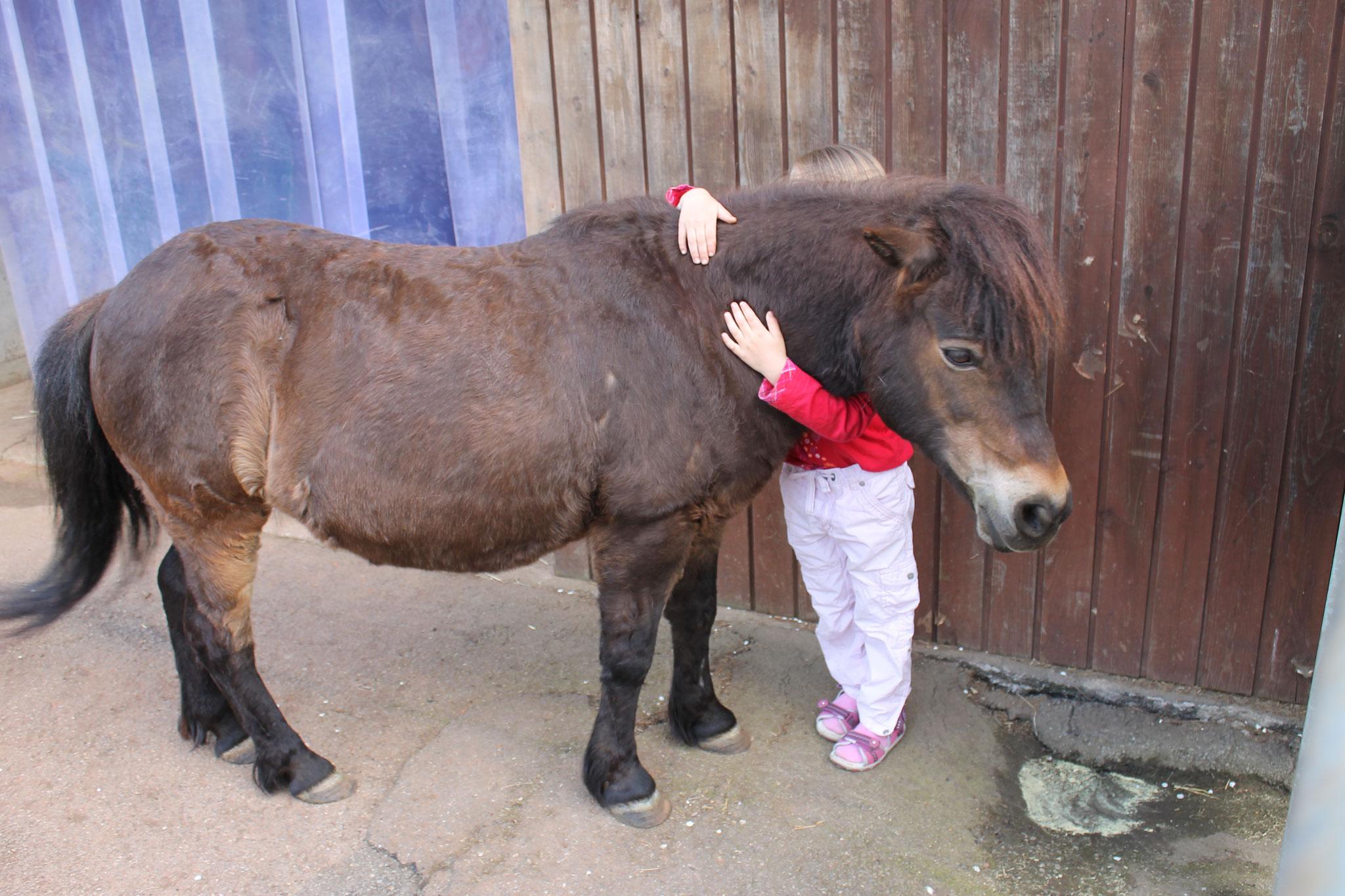 So sieht Liebe aus - Pony-Pony und ein Ferienkind