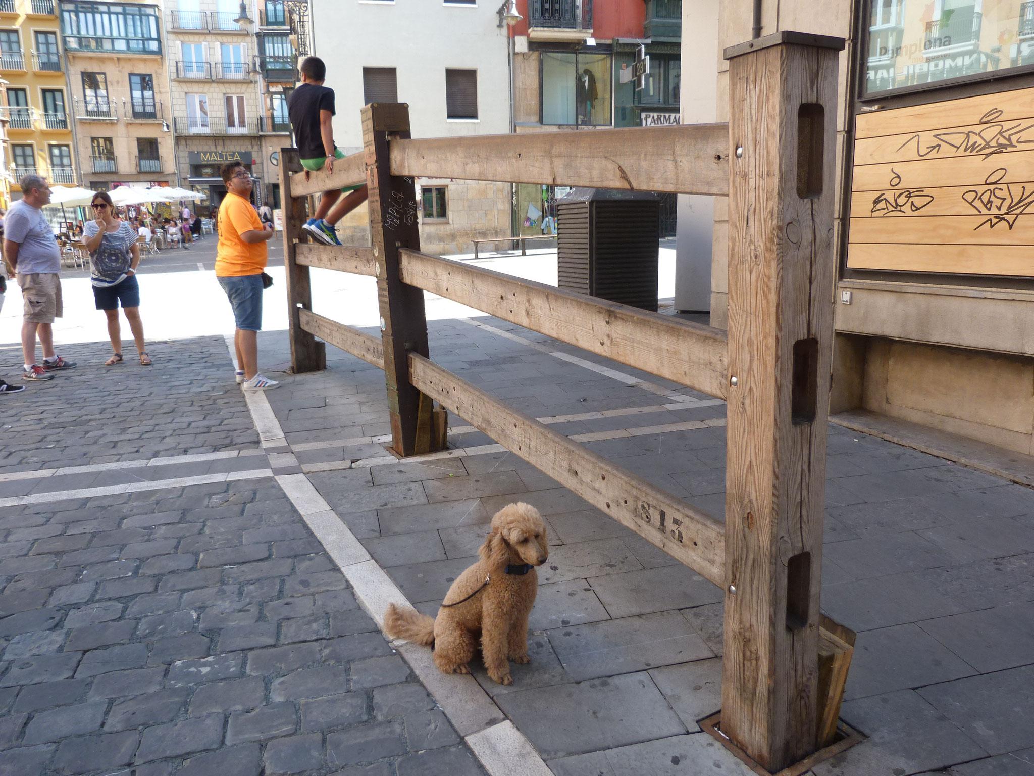 Barrikaden zum Gedenken an die Toten der Bull-Rennen