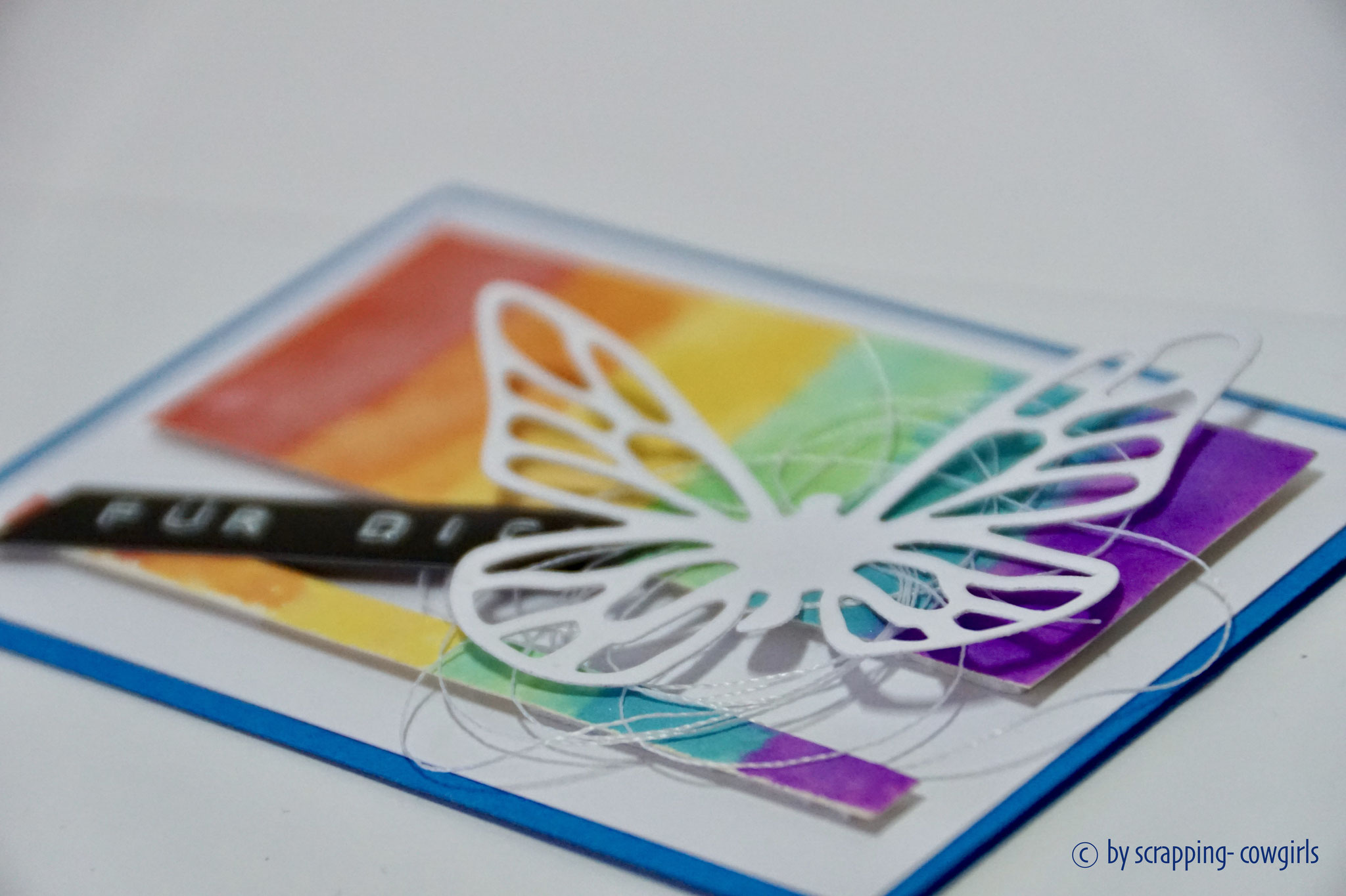 Regenbogen Schmetterling klein Detail