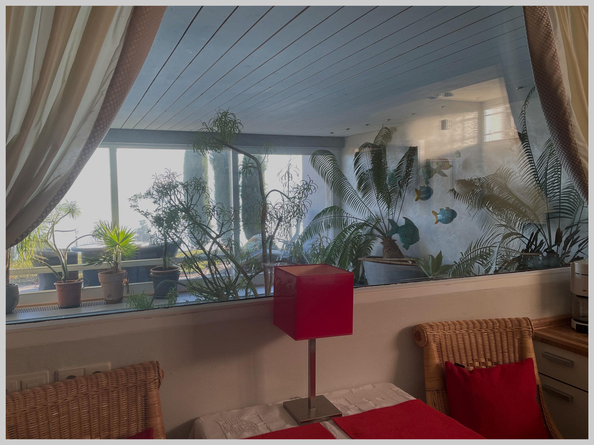 Wohnküche mit grosser Fensterfront