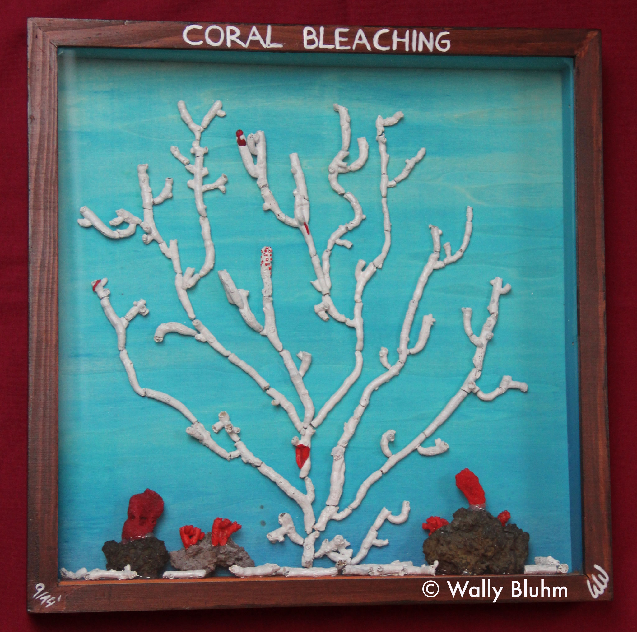 Coral Bleaching (2014) - Mixed Media