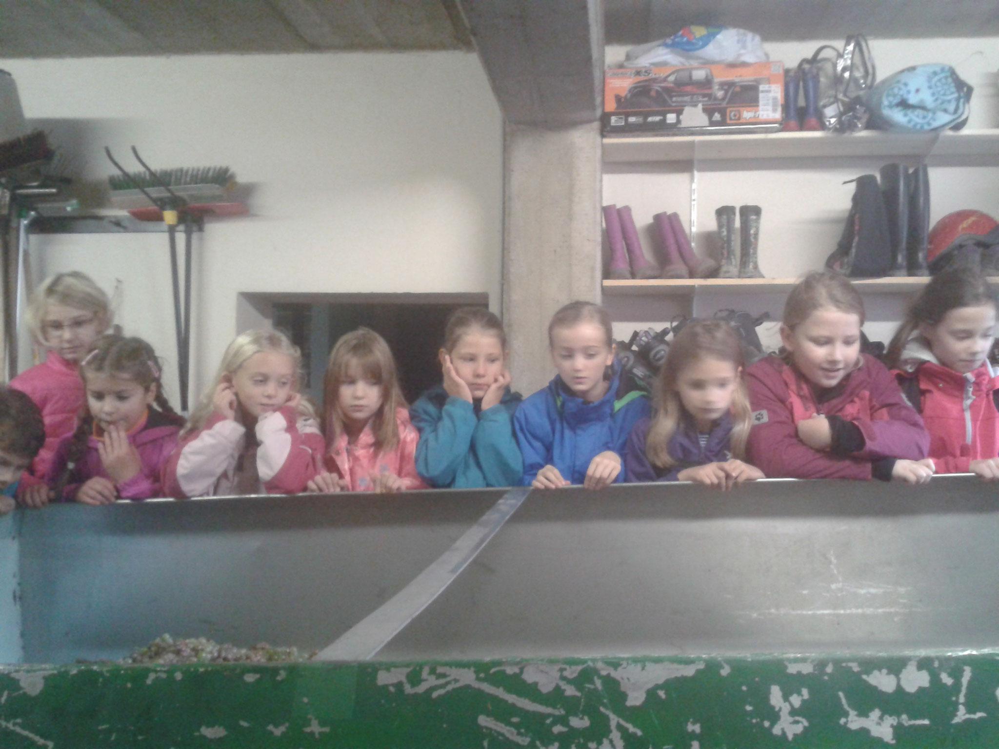 Ein Tag mit den Grundschülern der 3. Klasse.