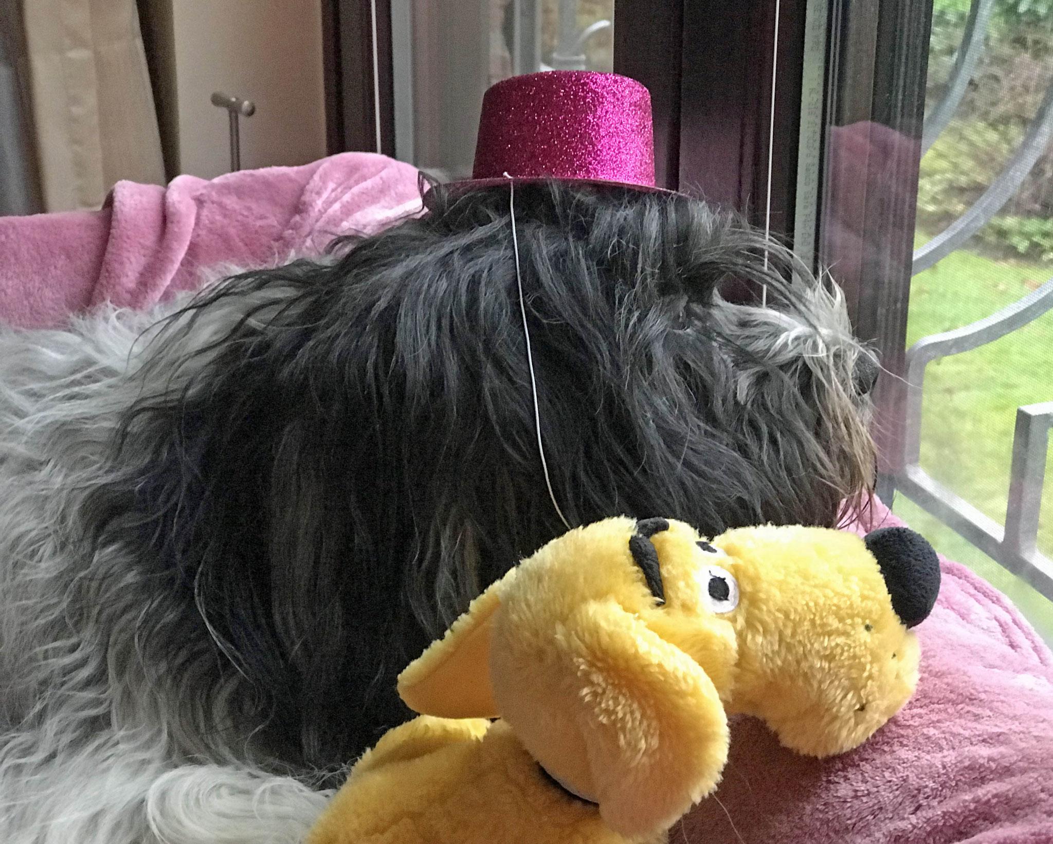 Sie hat mir auch diesen Sylvester so einen blöden Hut aufgesetzt!