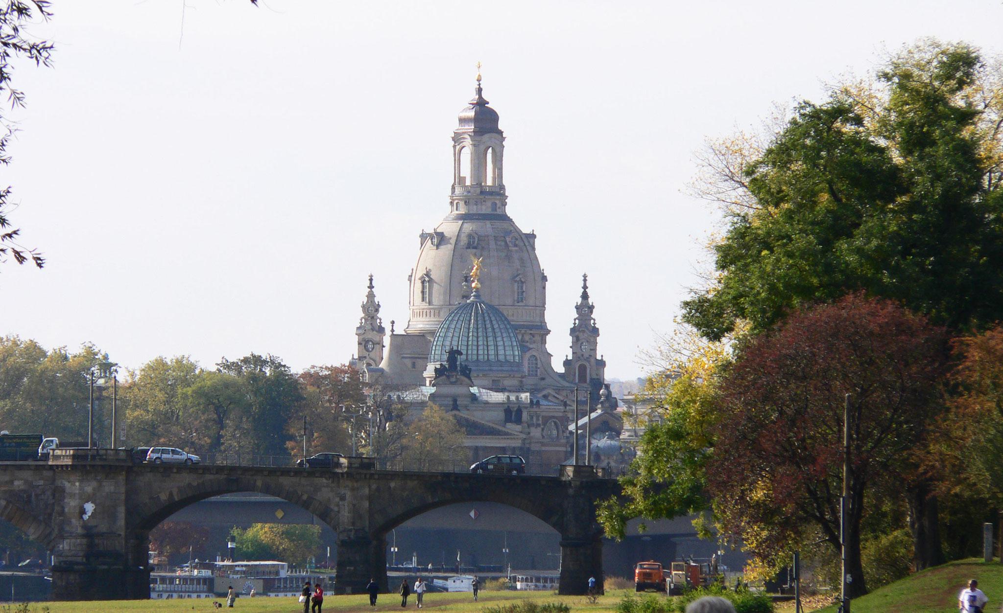 Blick von den Elbwiesen auf die Frauenkirche