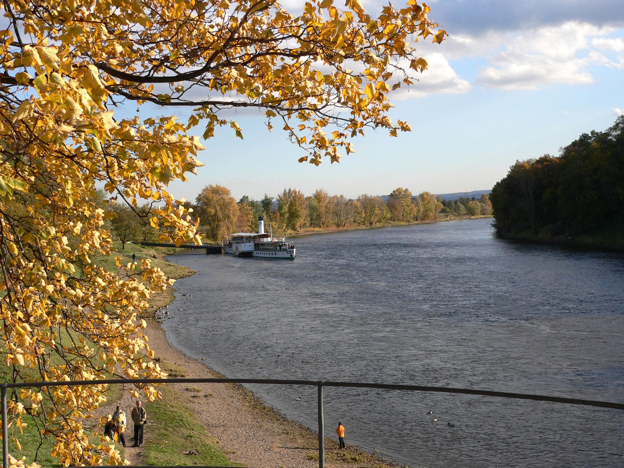 Dampferanlegestelle in Pillnitz