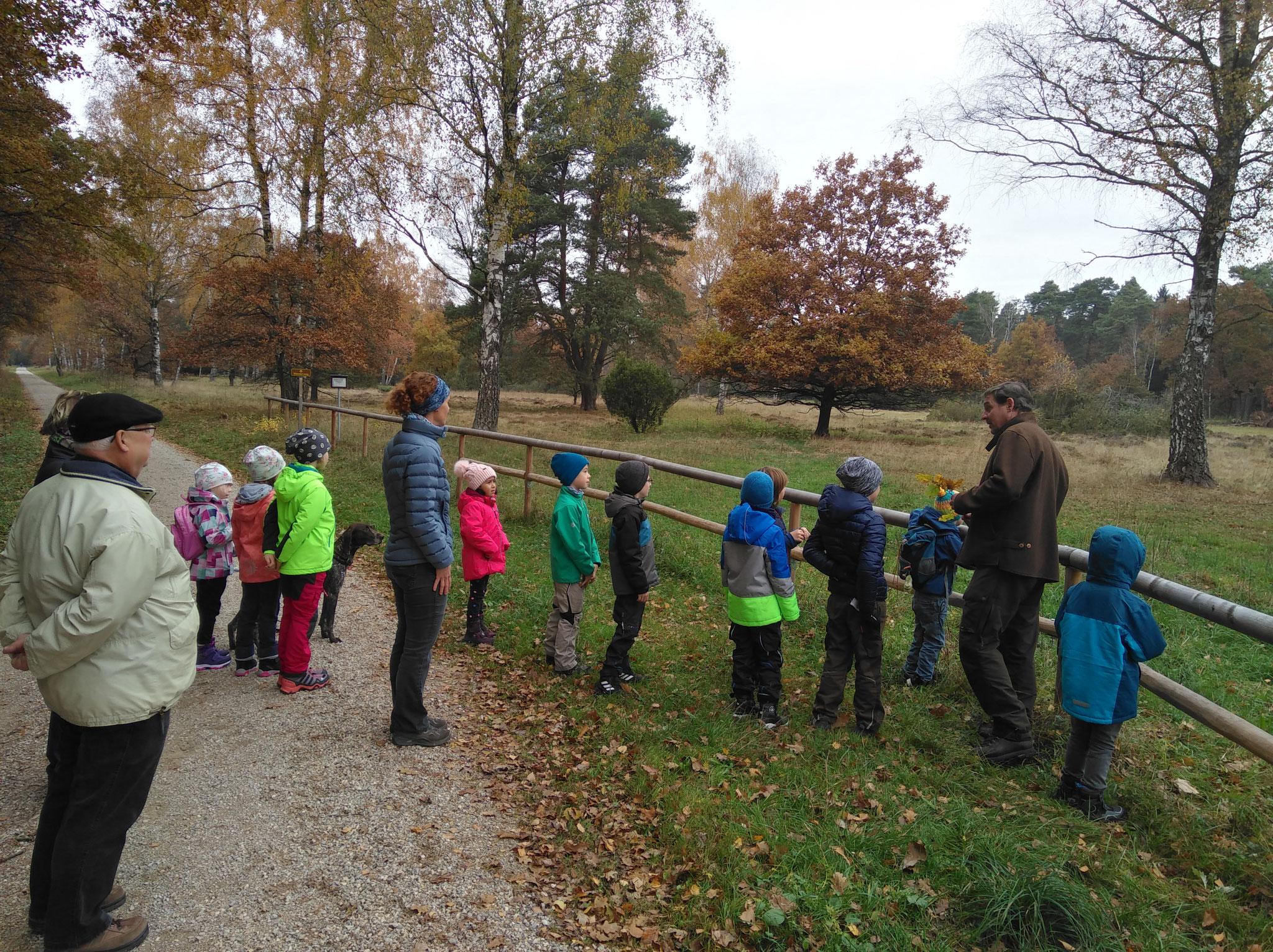 Spaziergang mit dem Förster durch die Nöttinger Heide - November 2018