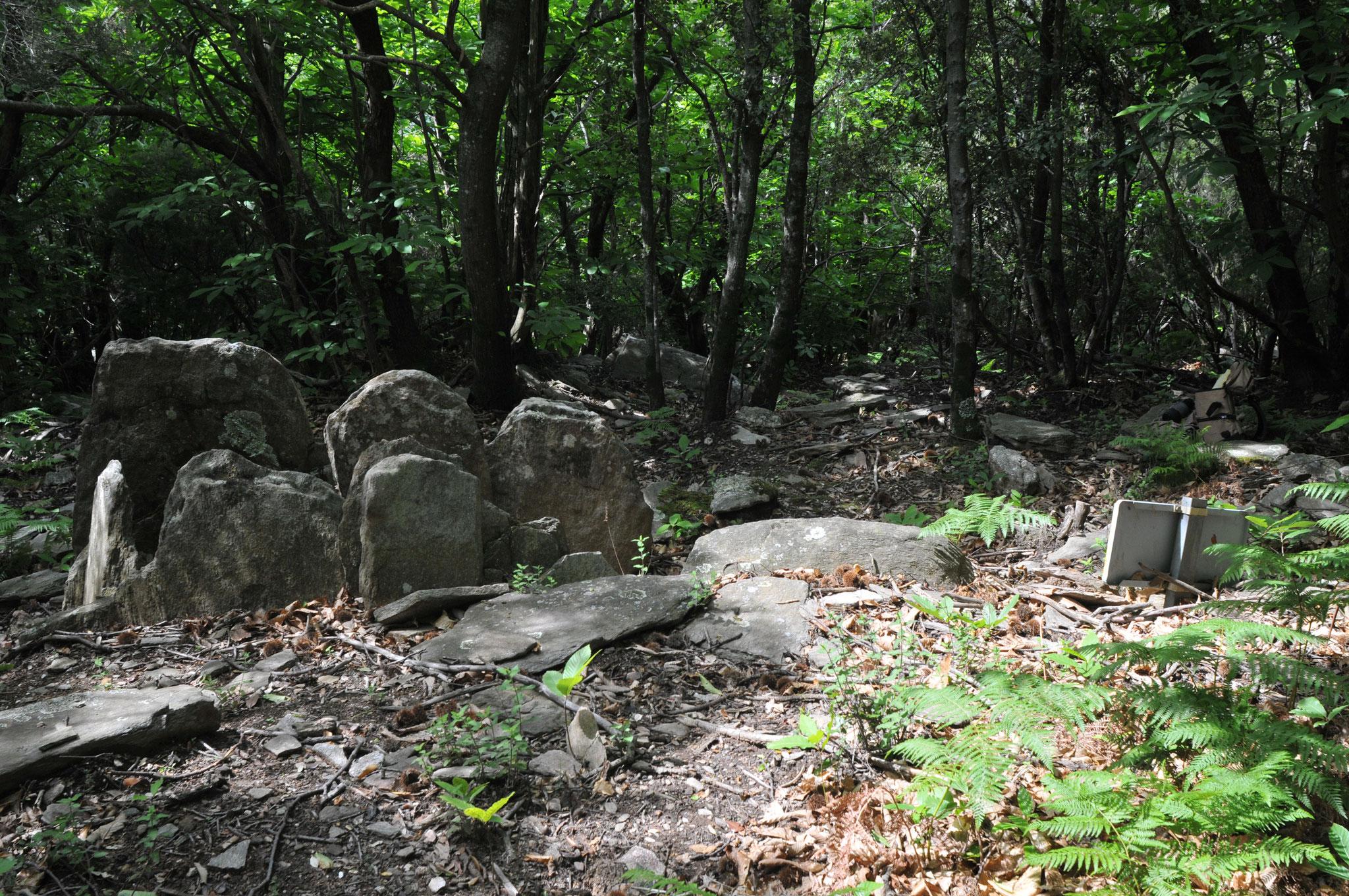 Dolmen III des seilhols
