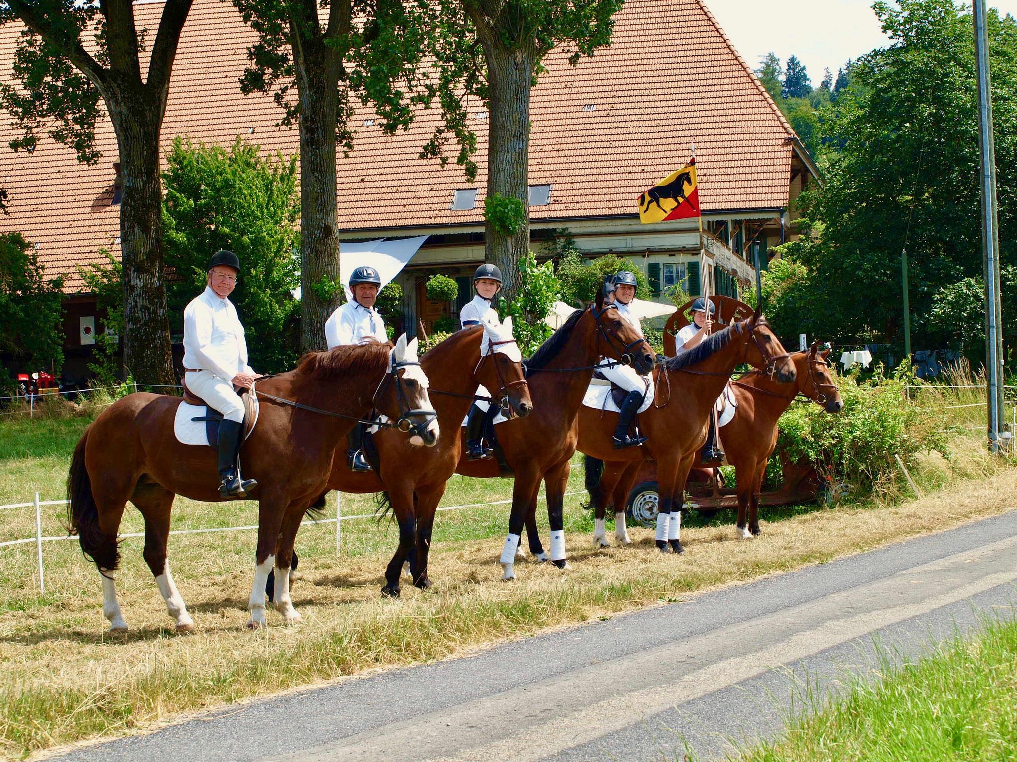 Brauntiere mit Reitern warten gespannt auf das Hochzeitspaar
