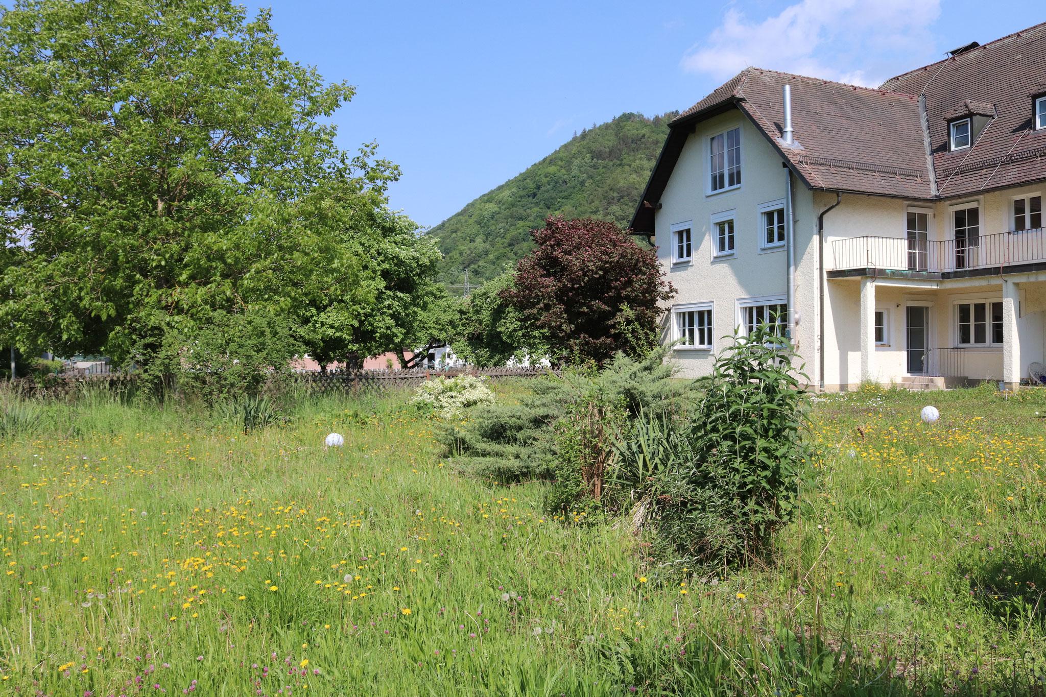 Donauvilla Jochenstein Garten