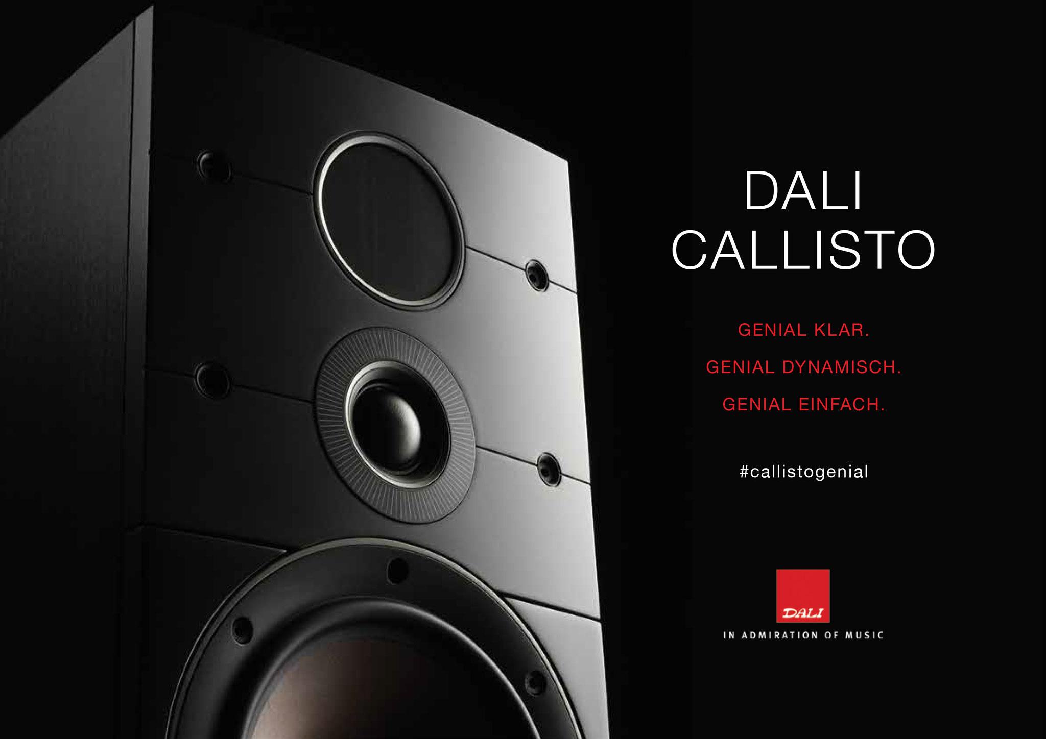 Dali Callisto Prospekt