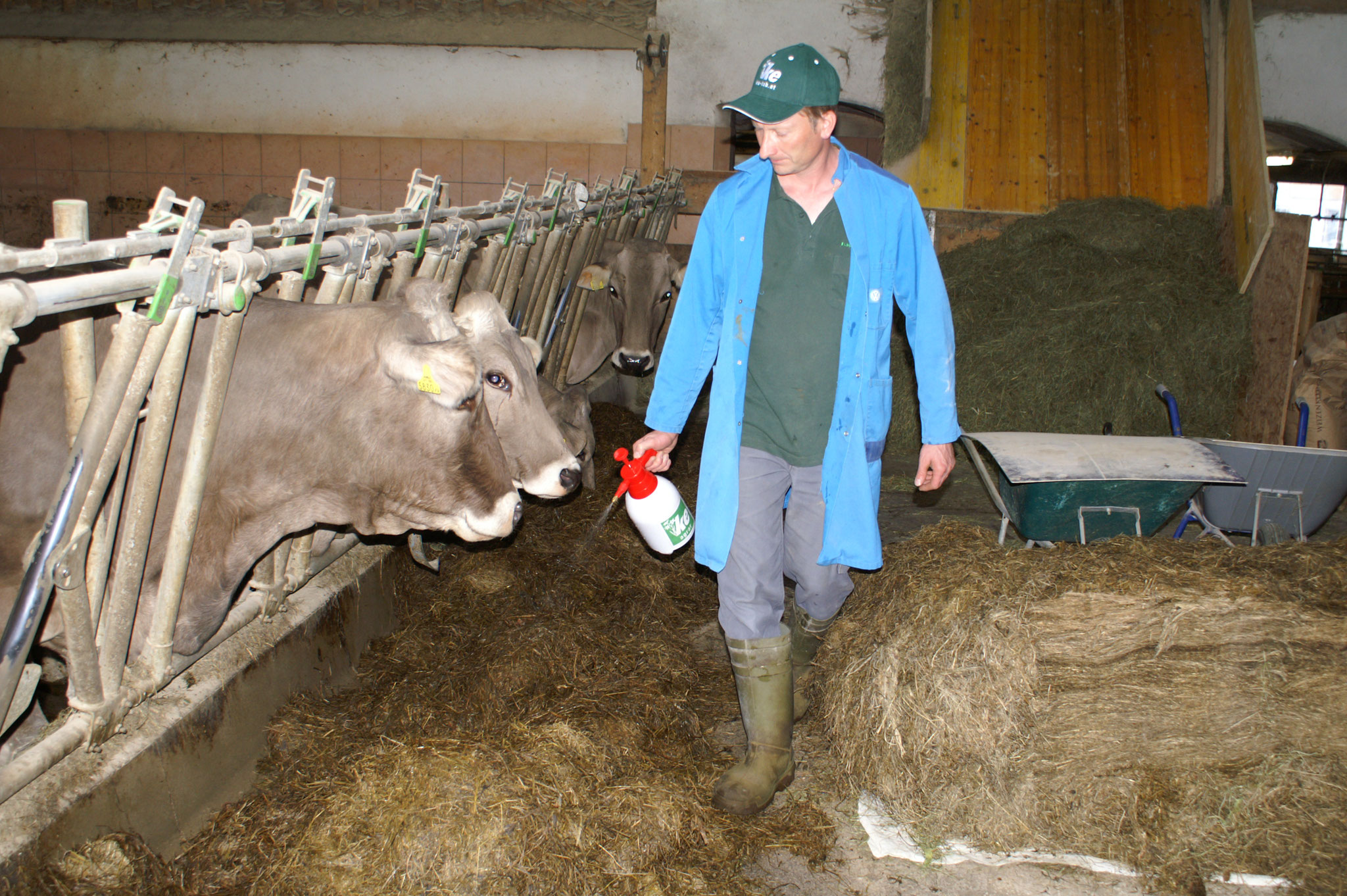 Mit einem Sprühgerät kann KE-agrar pur verwendet werden.