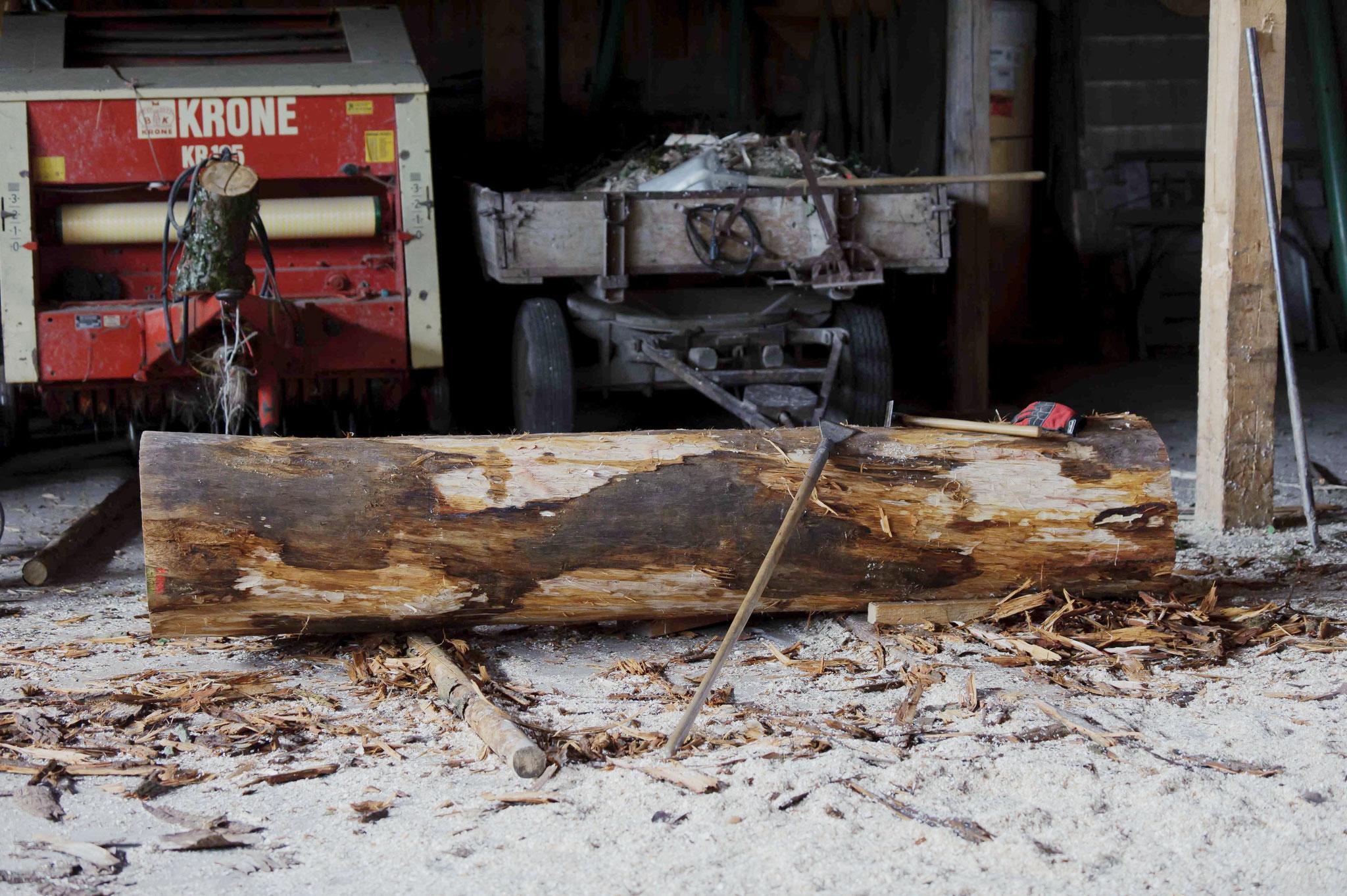 Eichenstamm 2,80m lang, 55 cm Durchmesser, ca. 700 kg