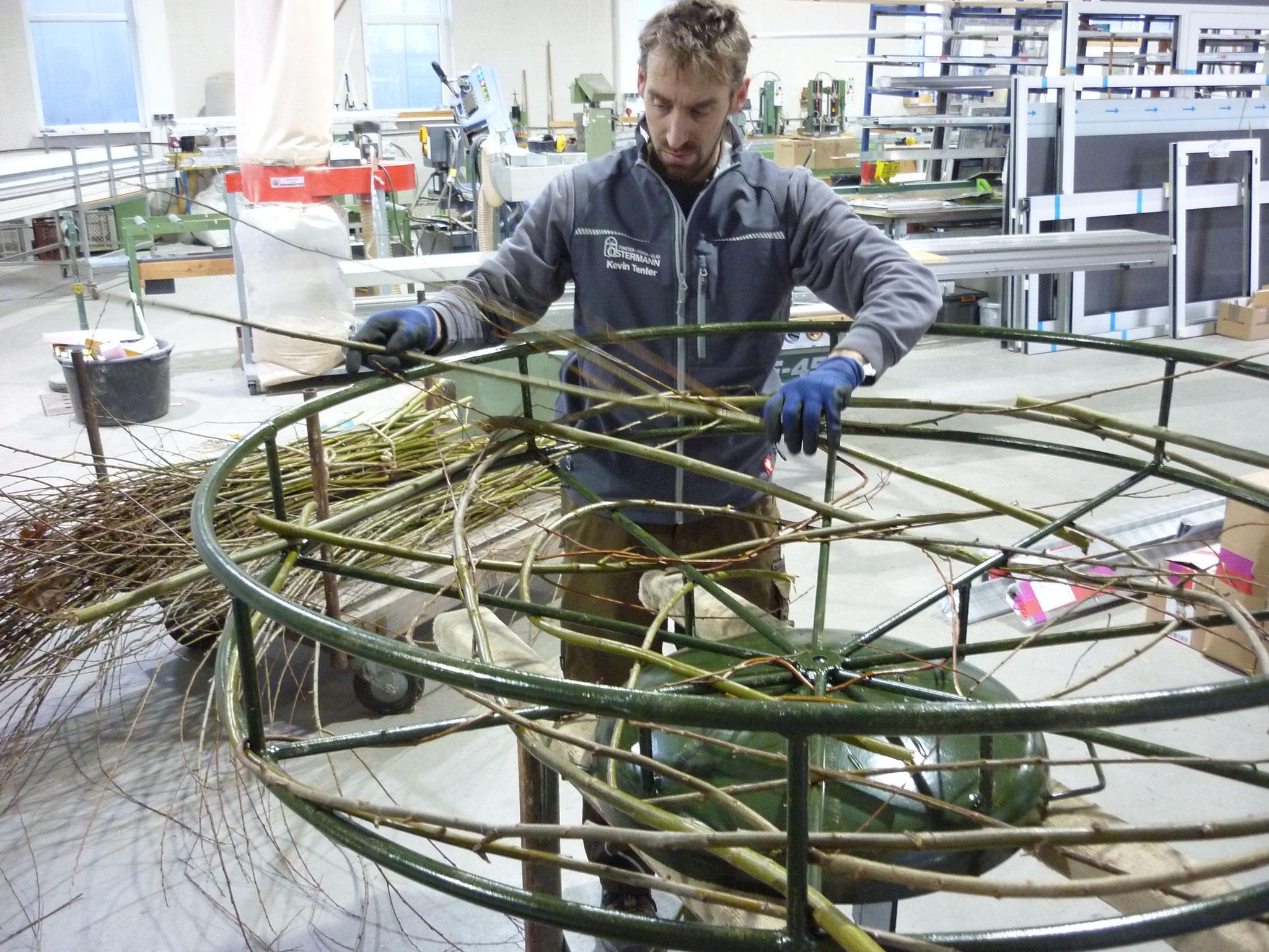 Kevin Tenter flechtet die ersten Weidenzweige in die Metallkonstruktion.