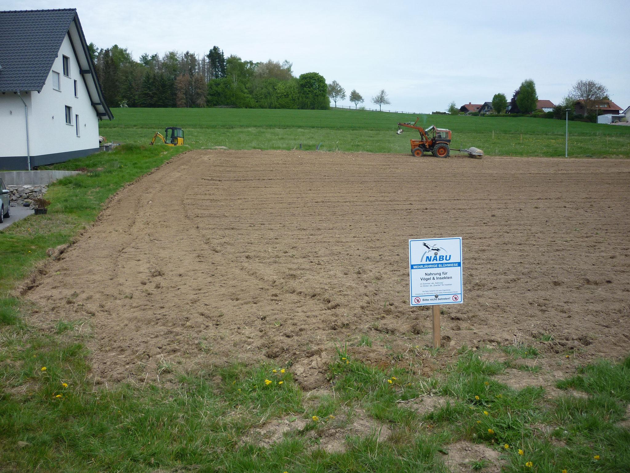Neuanlage einer Blühwiese in Bellersen im Neubaugebiet.