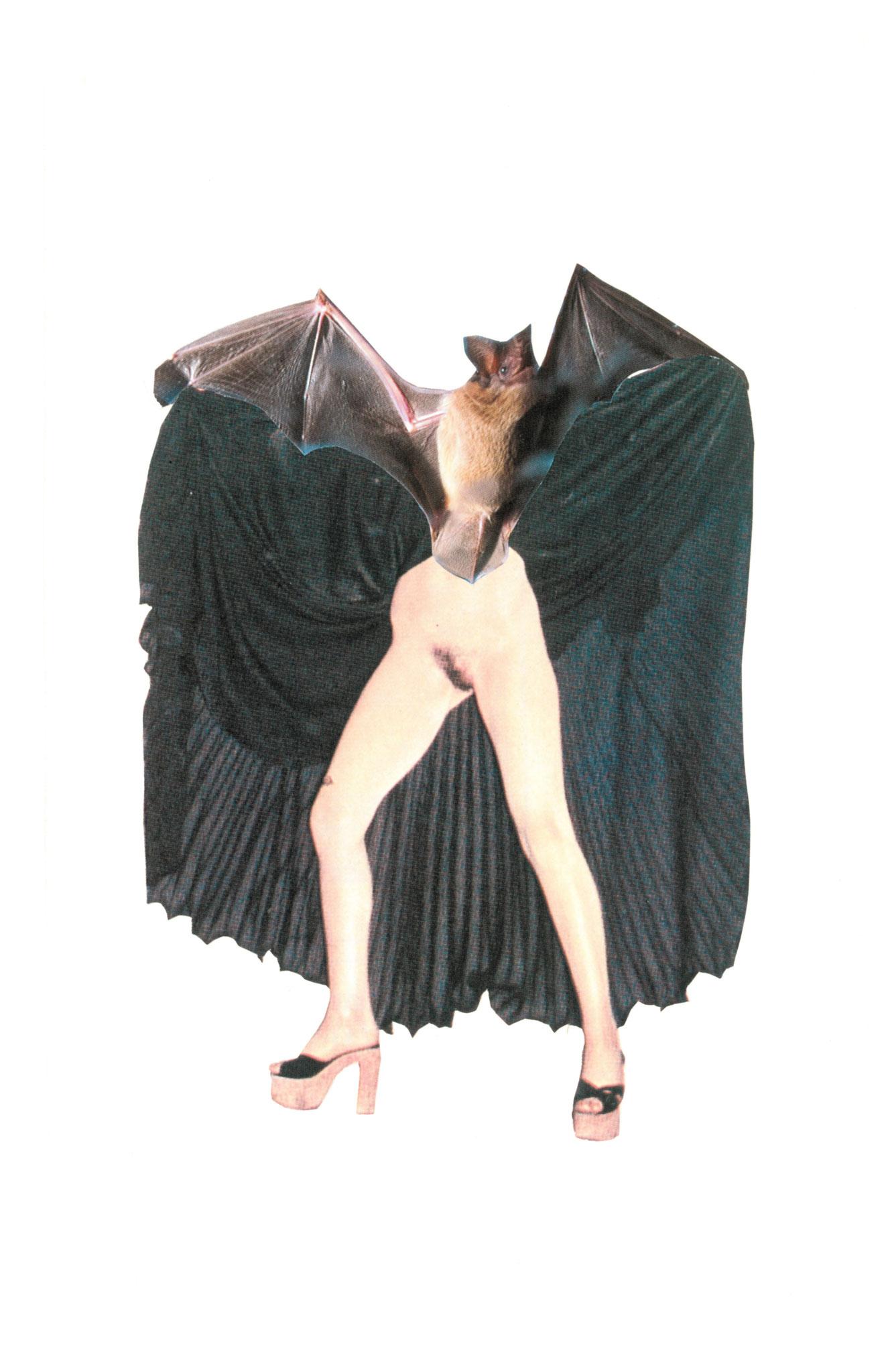 Bat chatte, 13x21cm, 2017