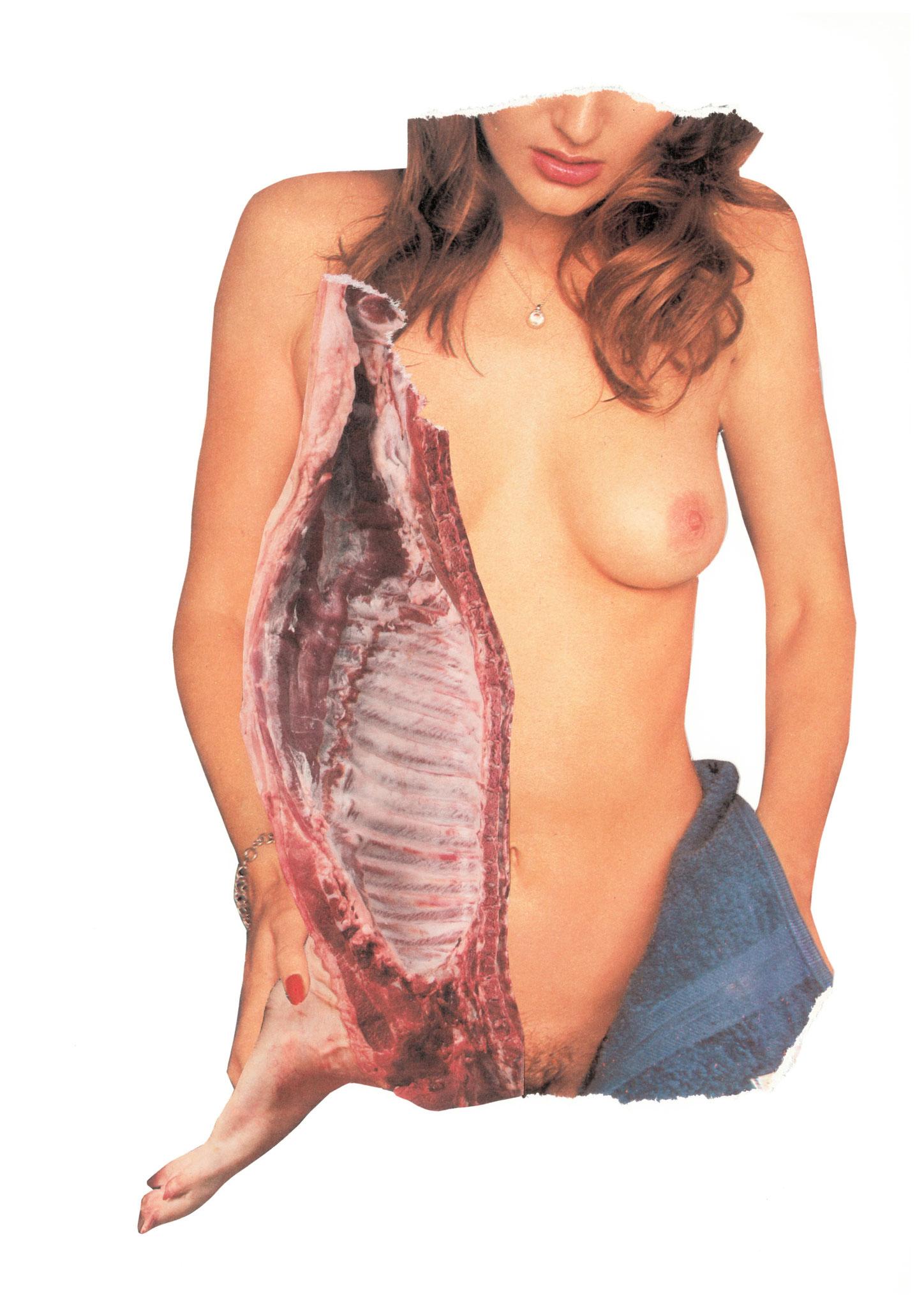 Anatomie d'une truie, 21x30cm, 2018