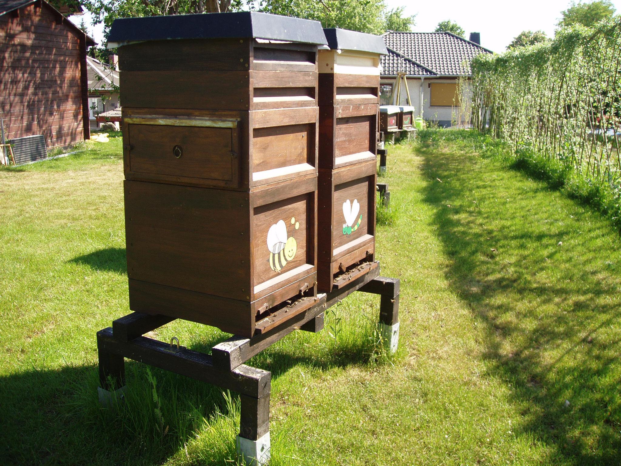 Mein Bienenstand.