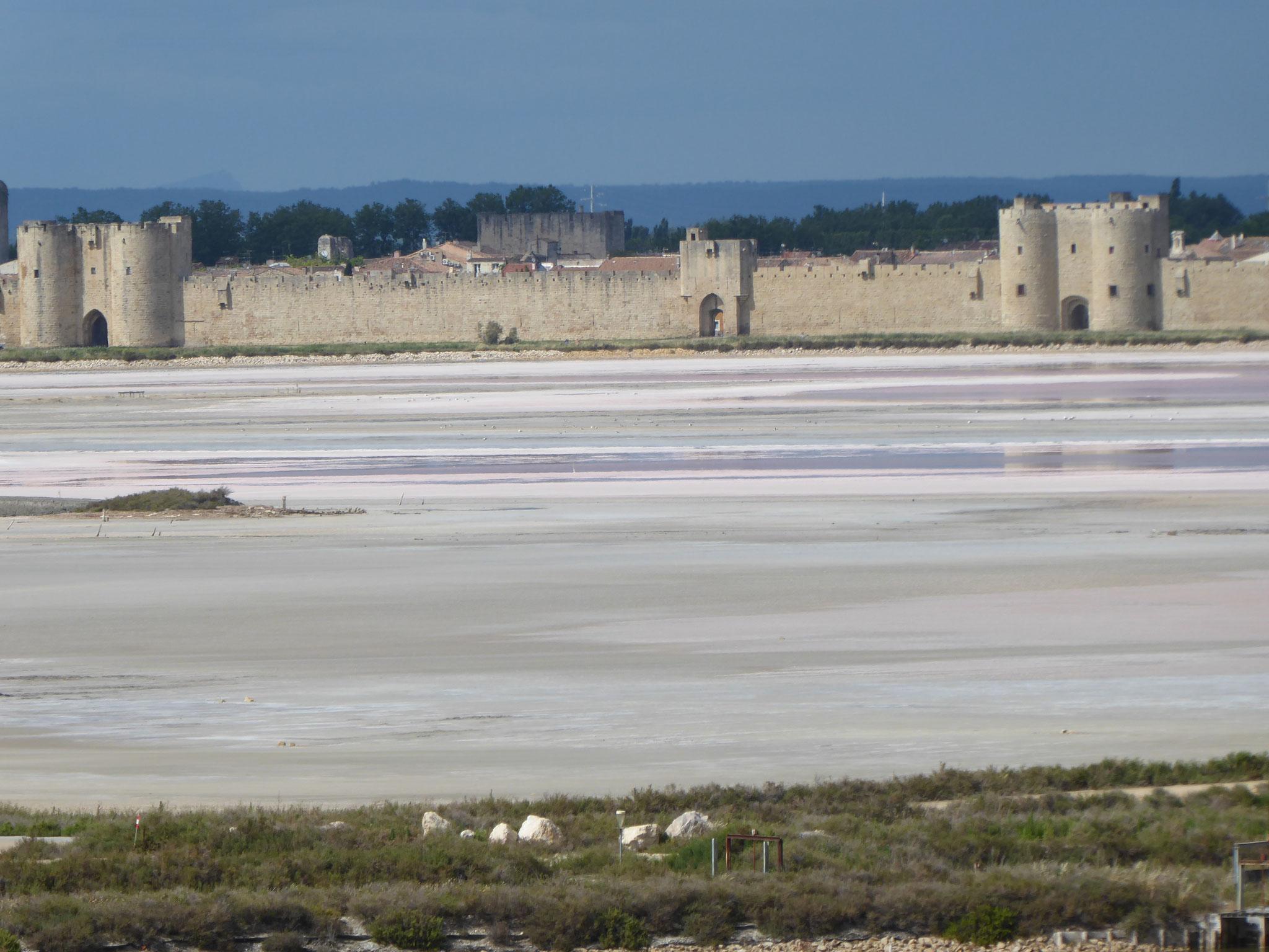 Die Salzgärten vor Aigues Mortes
