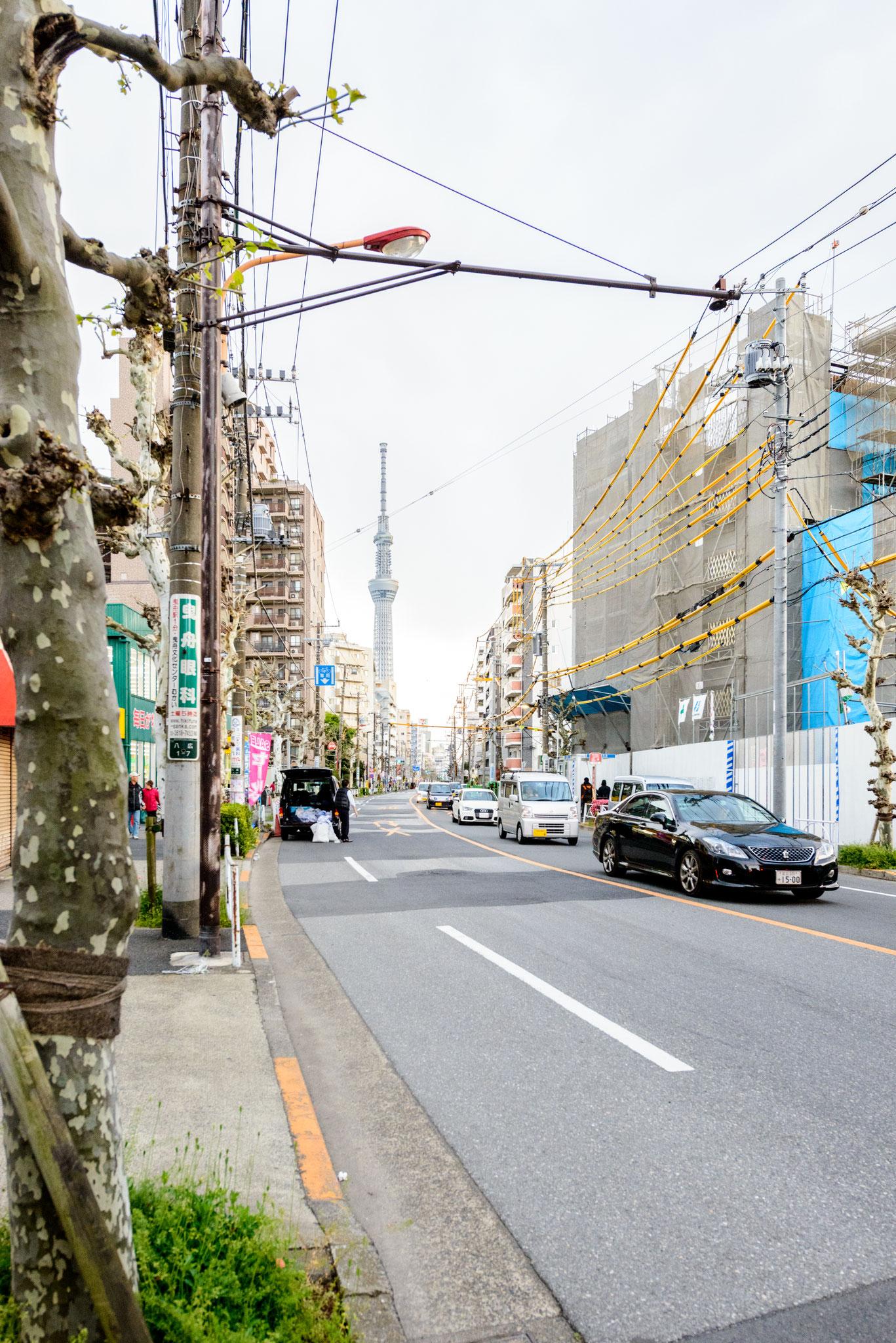 前面道路から見る東京スカイツリー(曳舟川通り)
