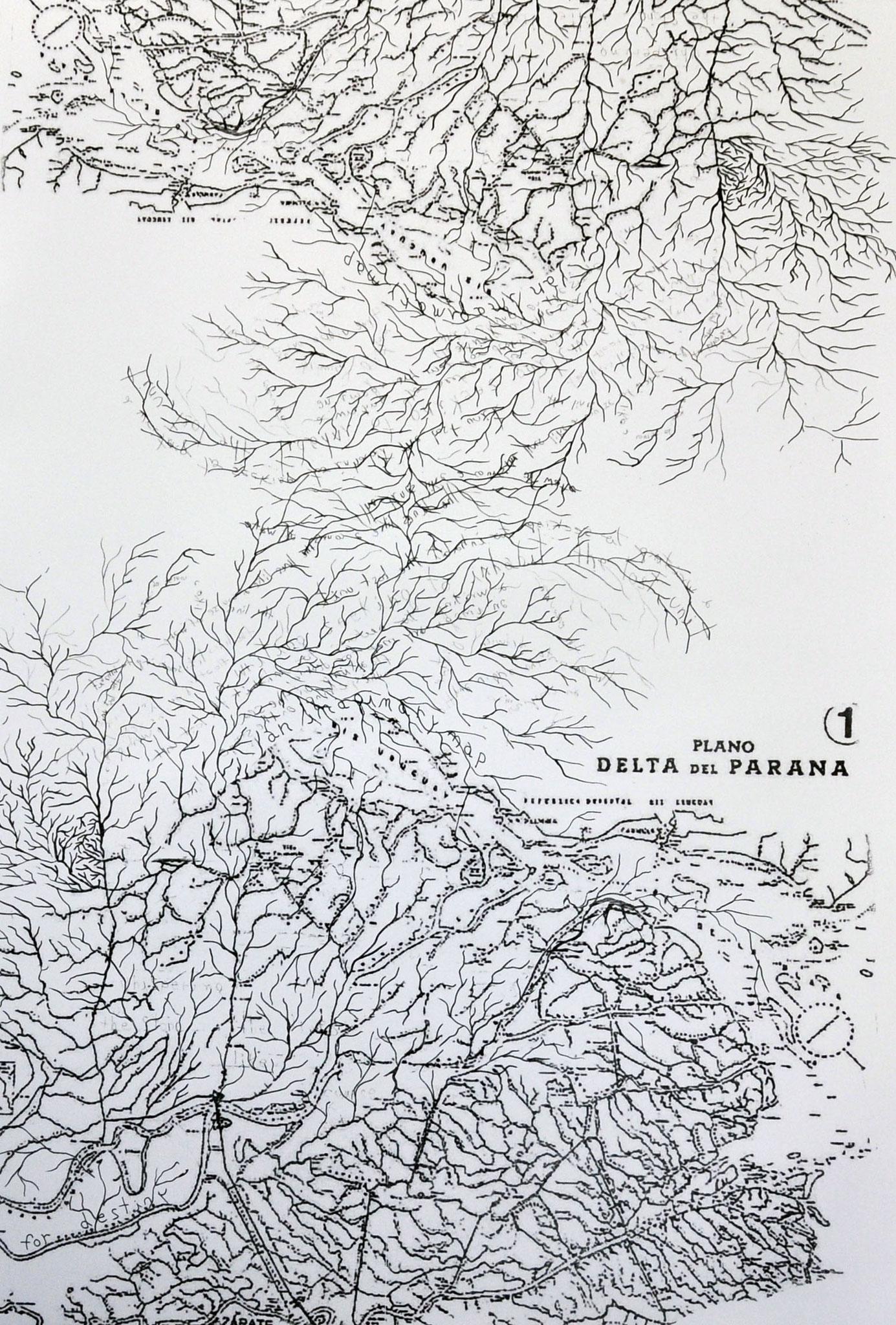 "Lorena Pradel (Argentina) ""delta del paraná"""