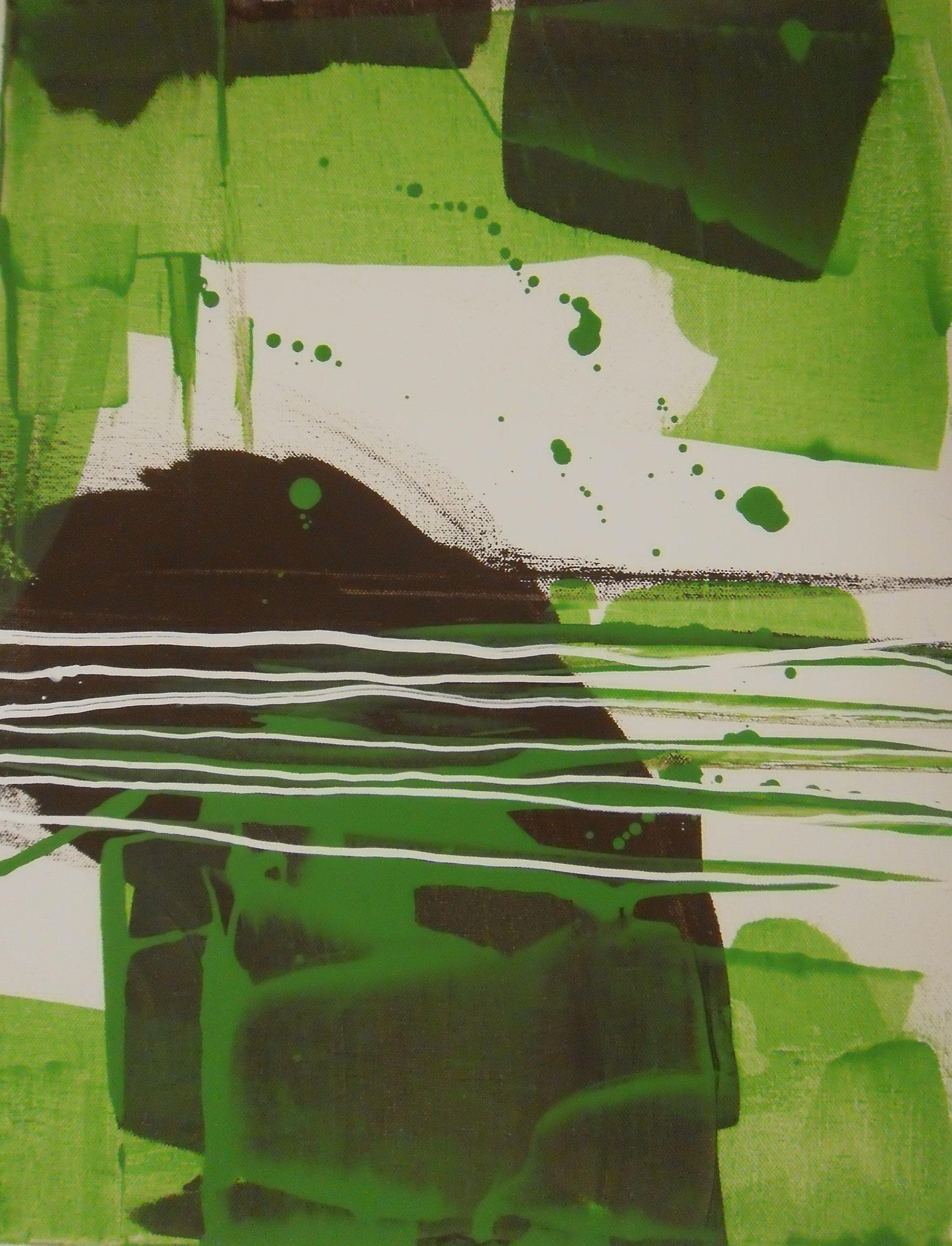 Rana Verde II 50 x 40 x 4 cm