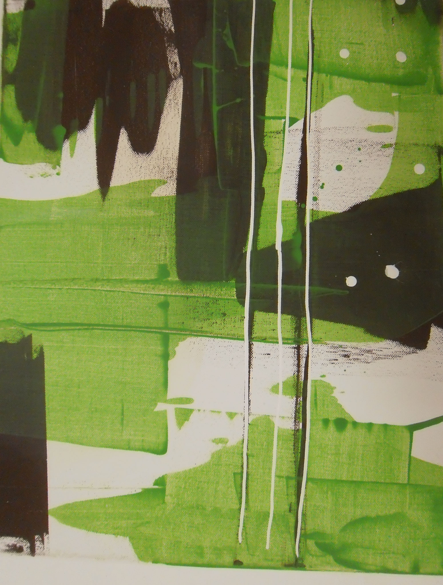 Rana Verde I 50 x 40 x 4 cm
