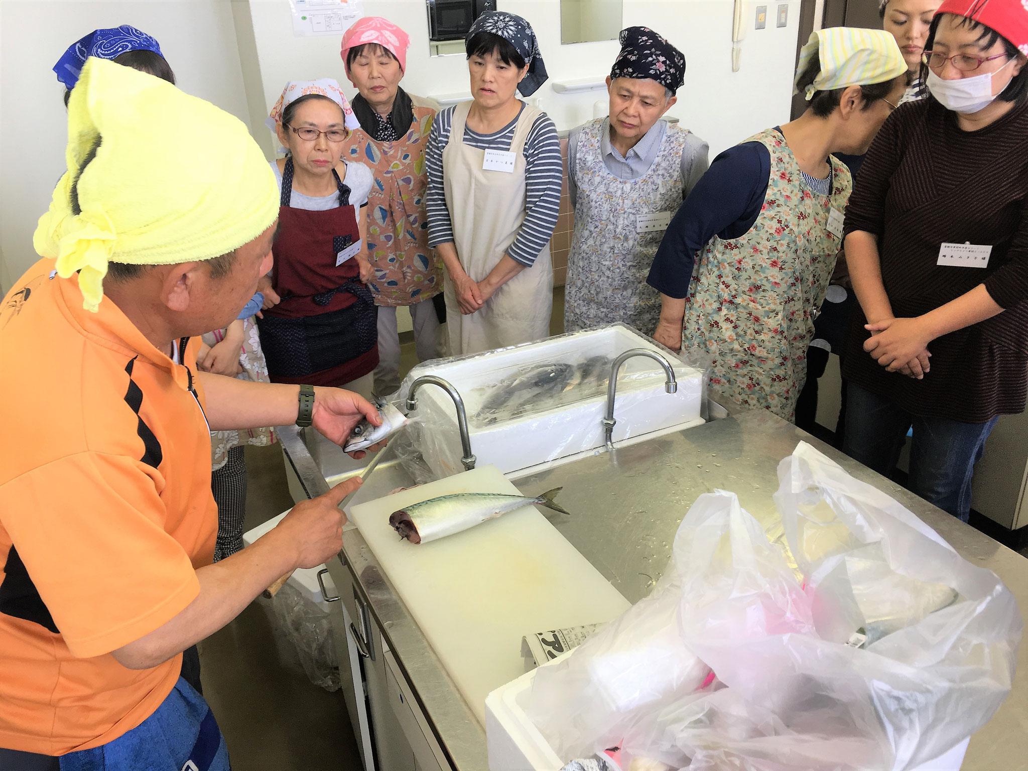 講師の魚末商店、中村さんからサバの捌き方を学ぶ