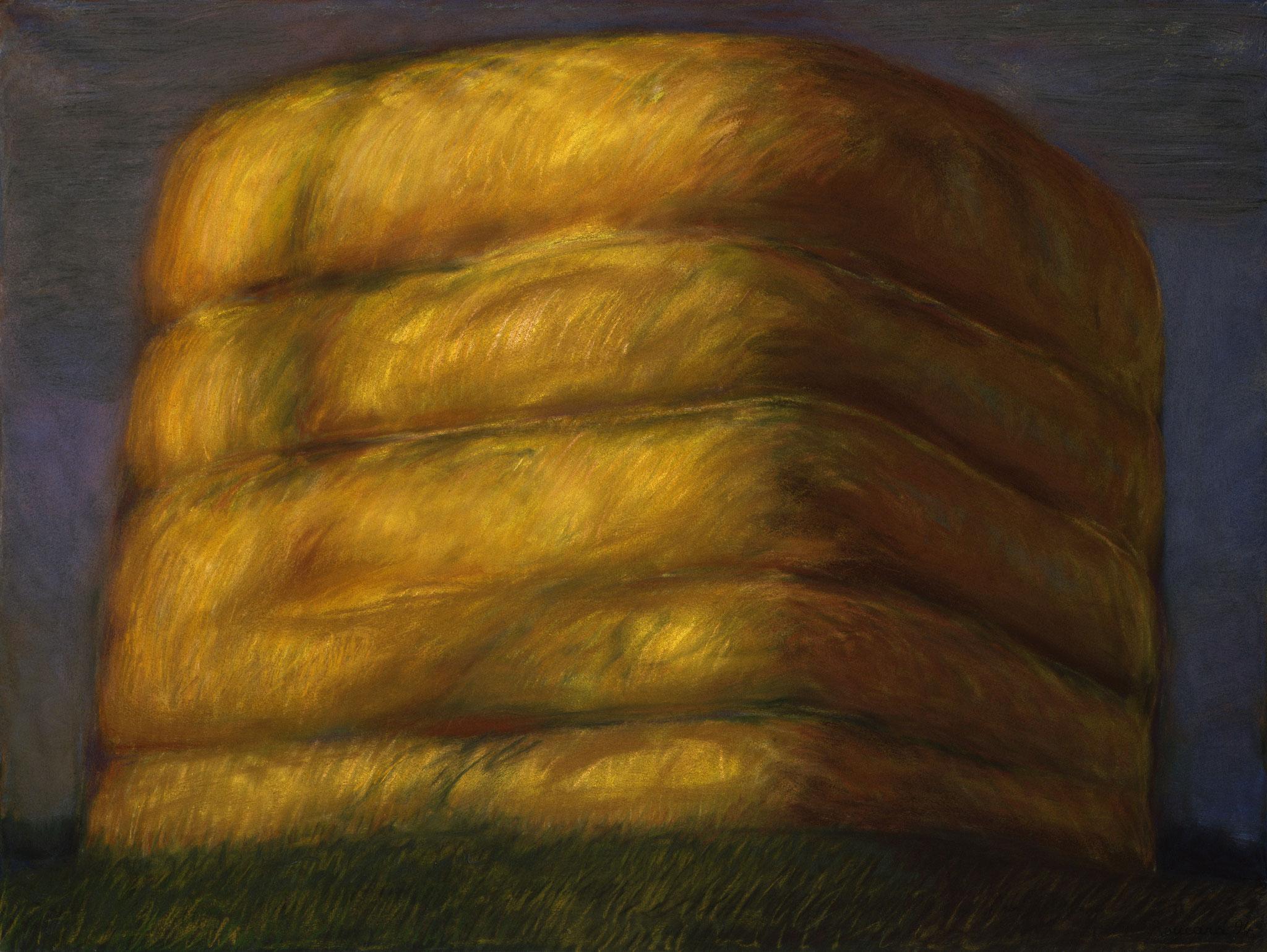 2001. 120 x 160 cm. Pastel sur papier préparé marouflé sur toile.