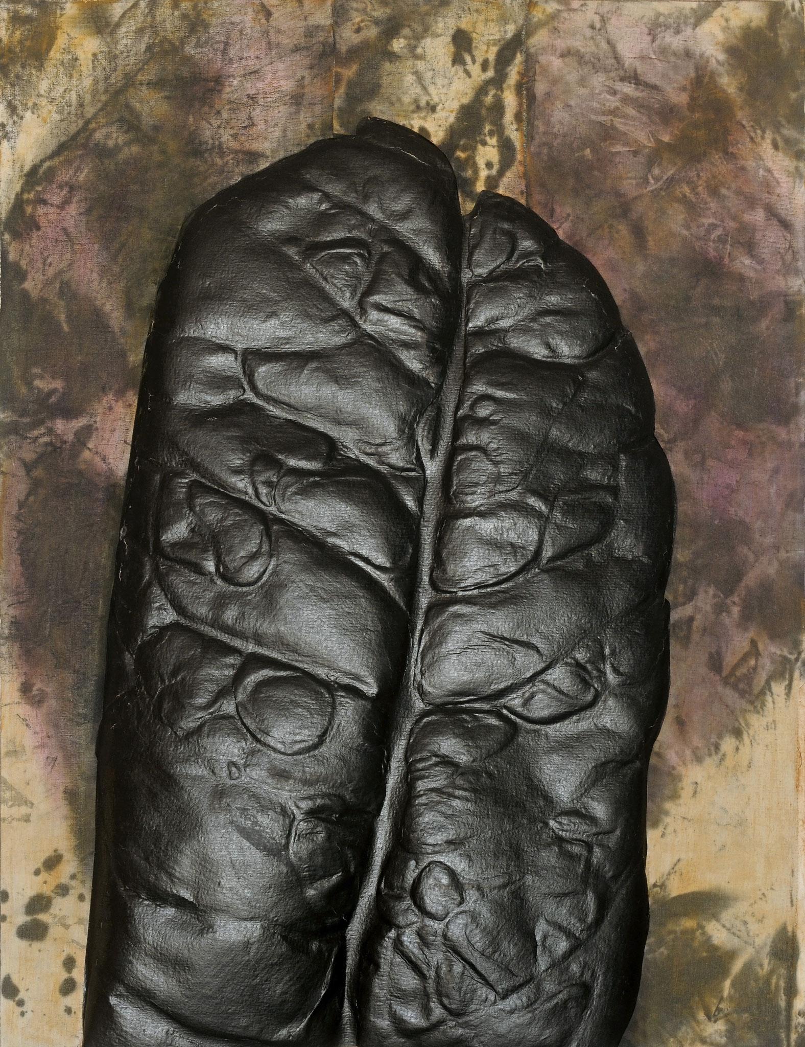 2011 - 2012. 64 x 50 cm. Papier en relief marouflé sur toile avec lès de toile marouflés sur papier. Encre d'imprimerie.