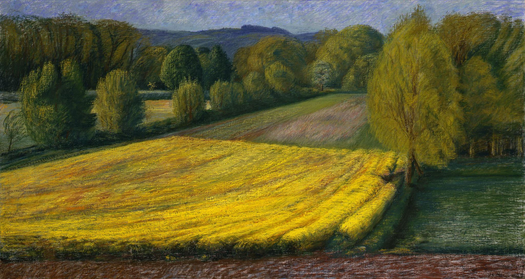 1995. 110 x 212 cm. Pastel sur toile marouflé sur toile.