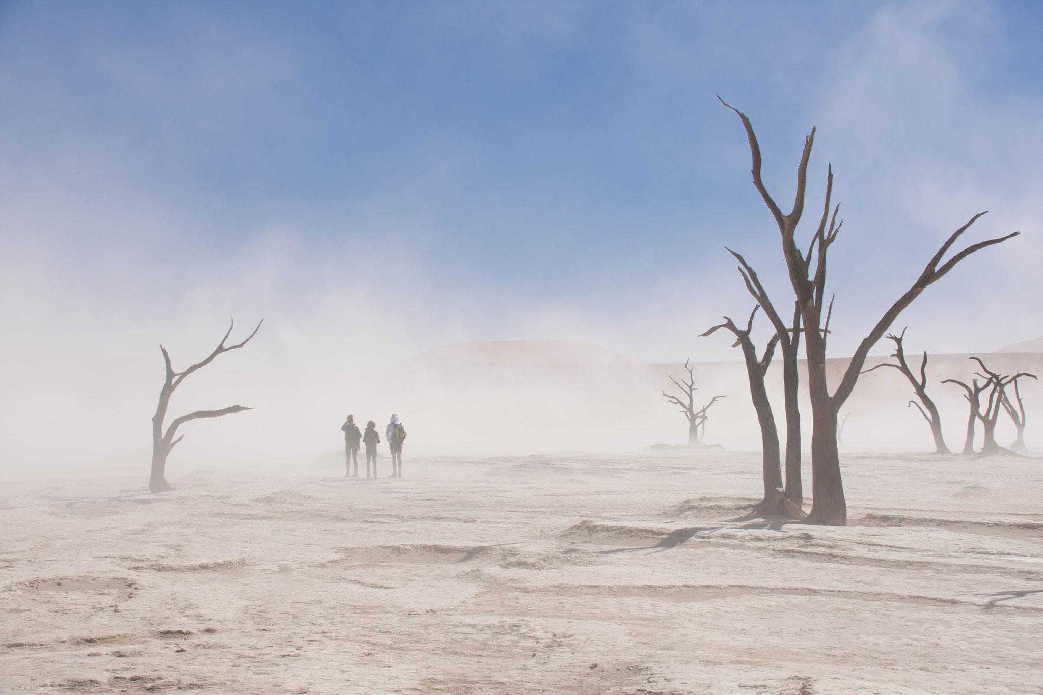 Sandsturm im Dead Vlei