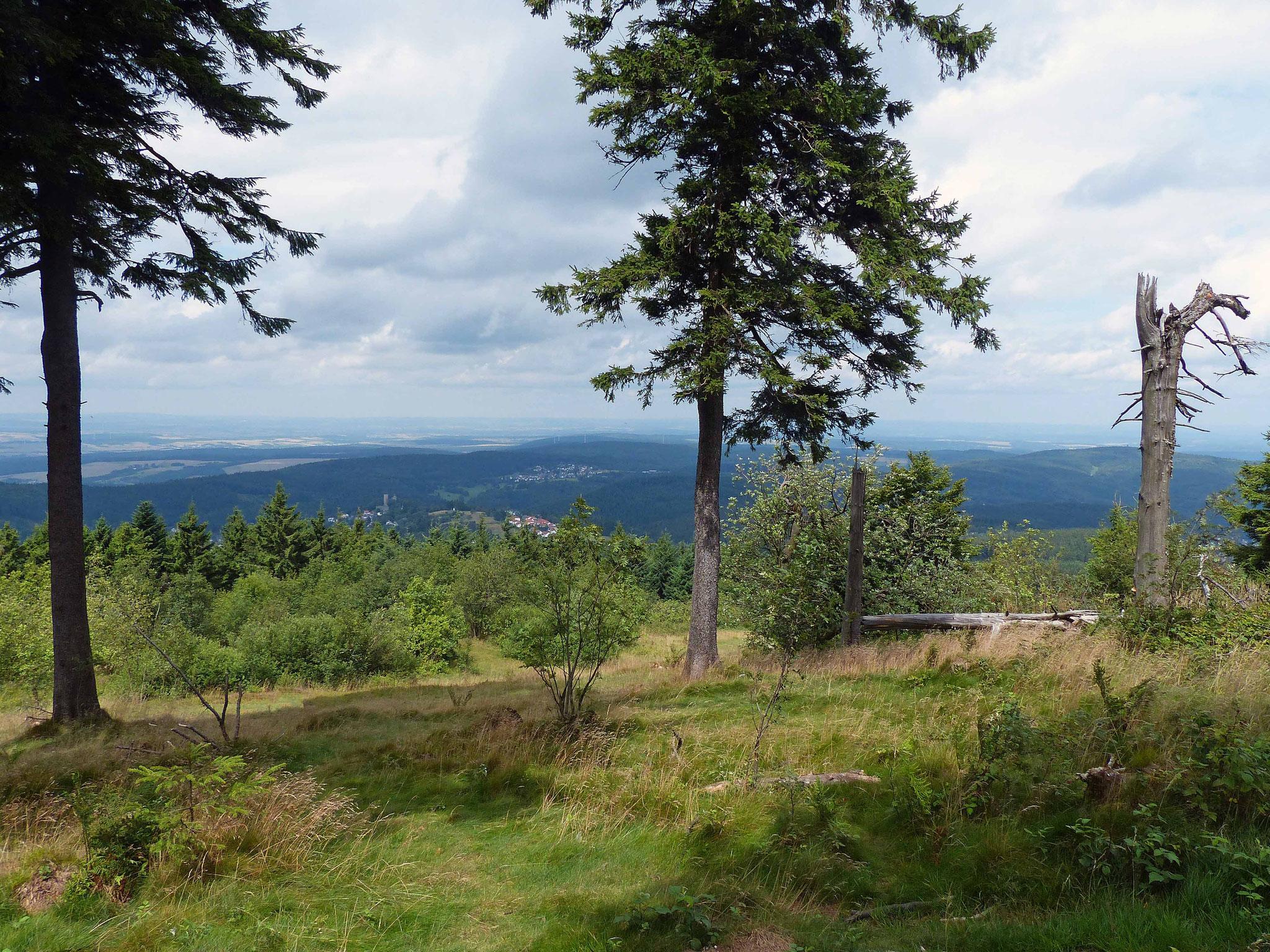 Blick vom Großen Feldberg