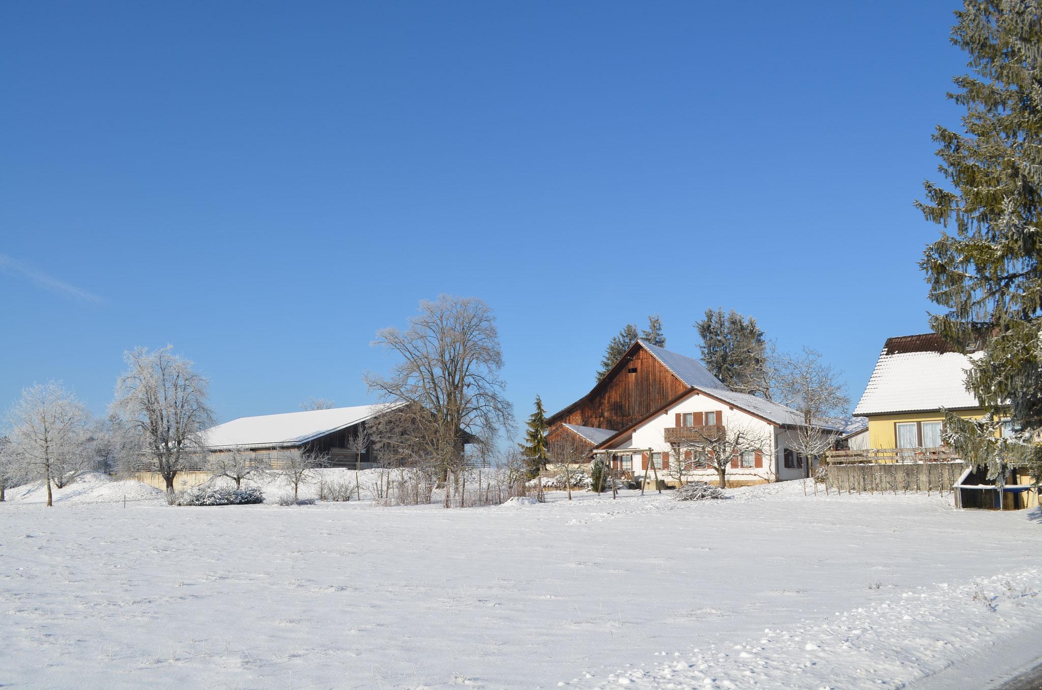 "Das ""Champ du Fol"" im Winter"